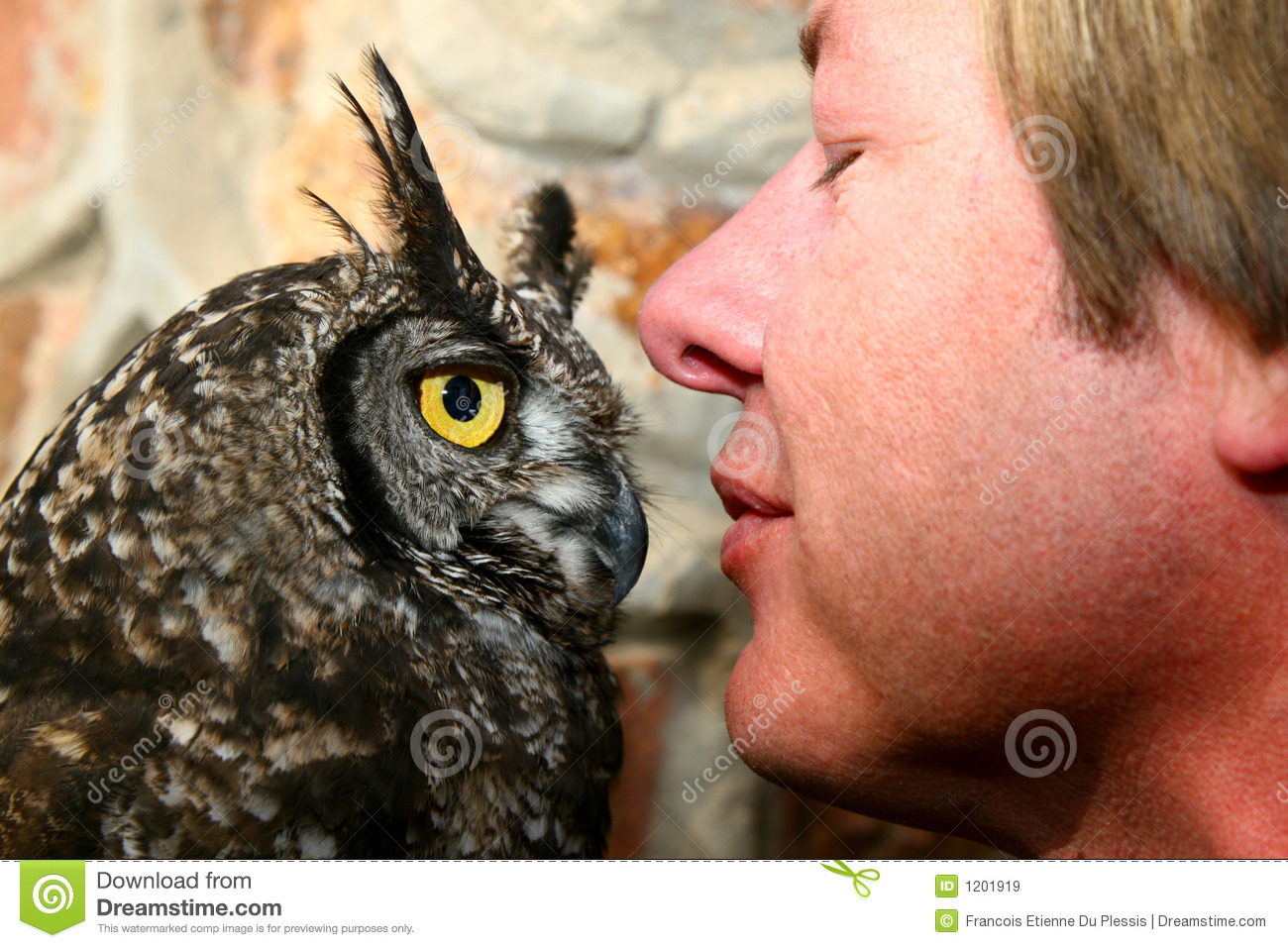 Owl and Trainer