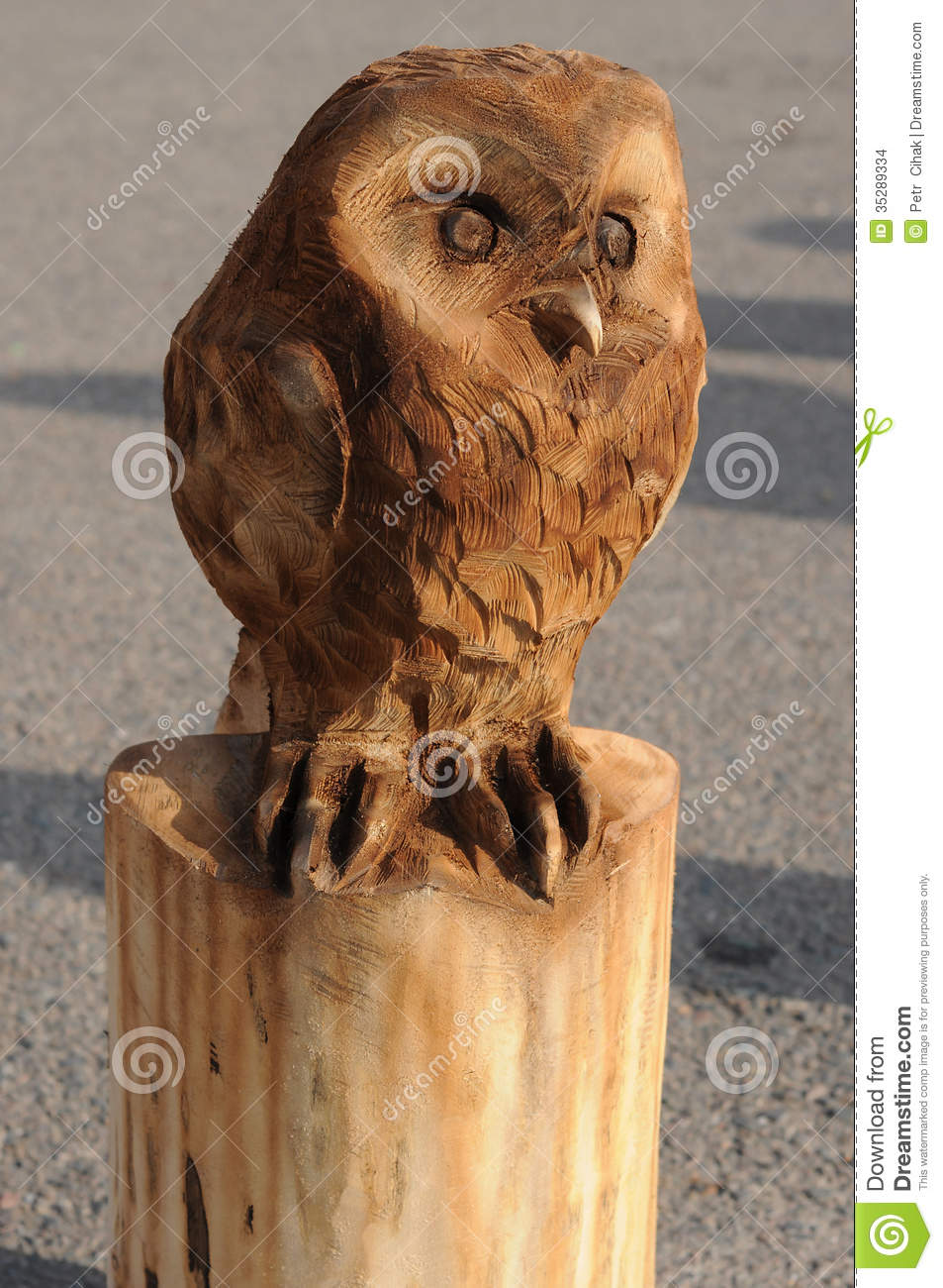 Owl stock images image