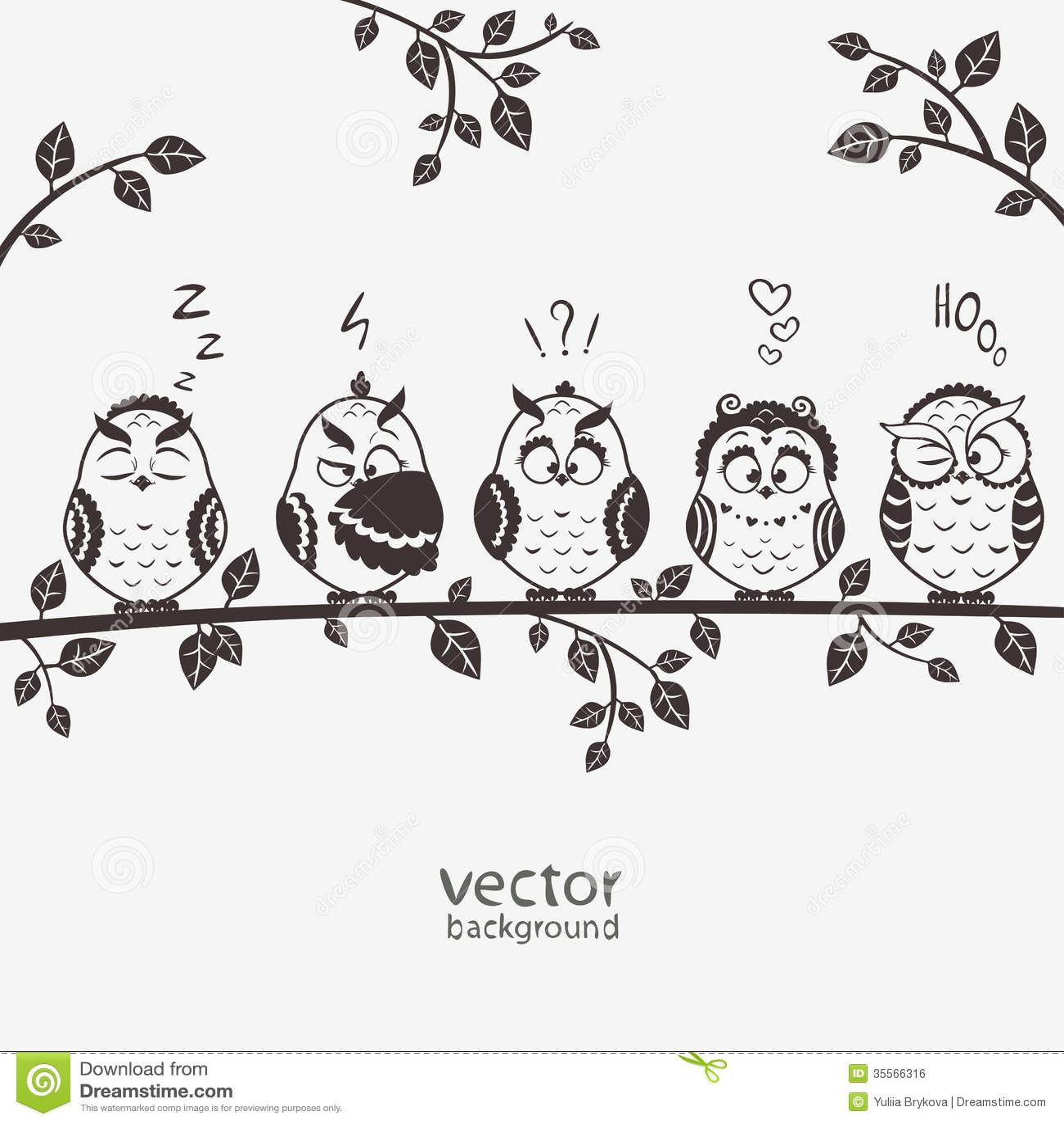 Owls five