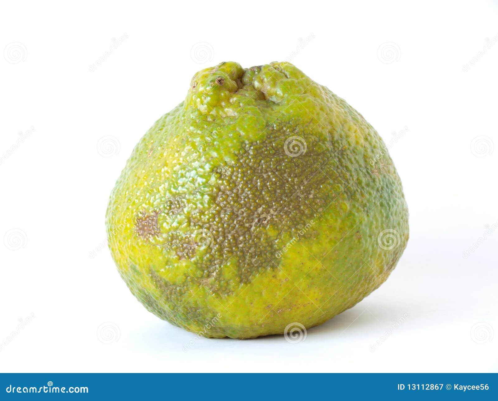 Owocowy ugli