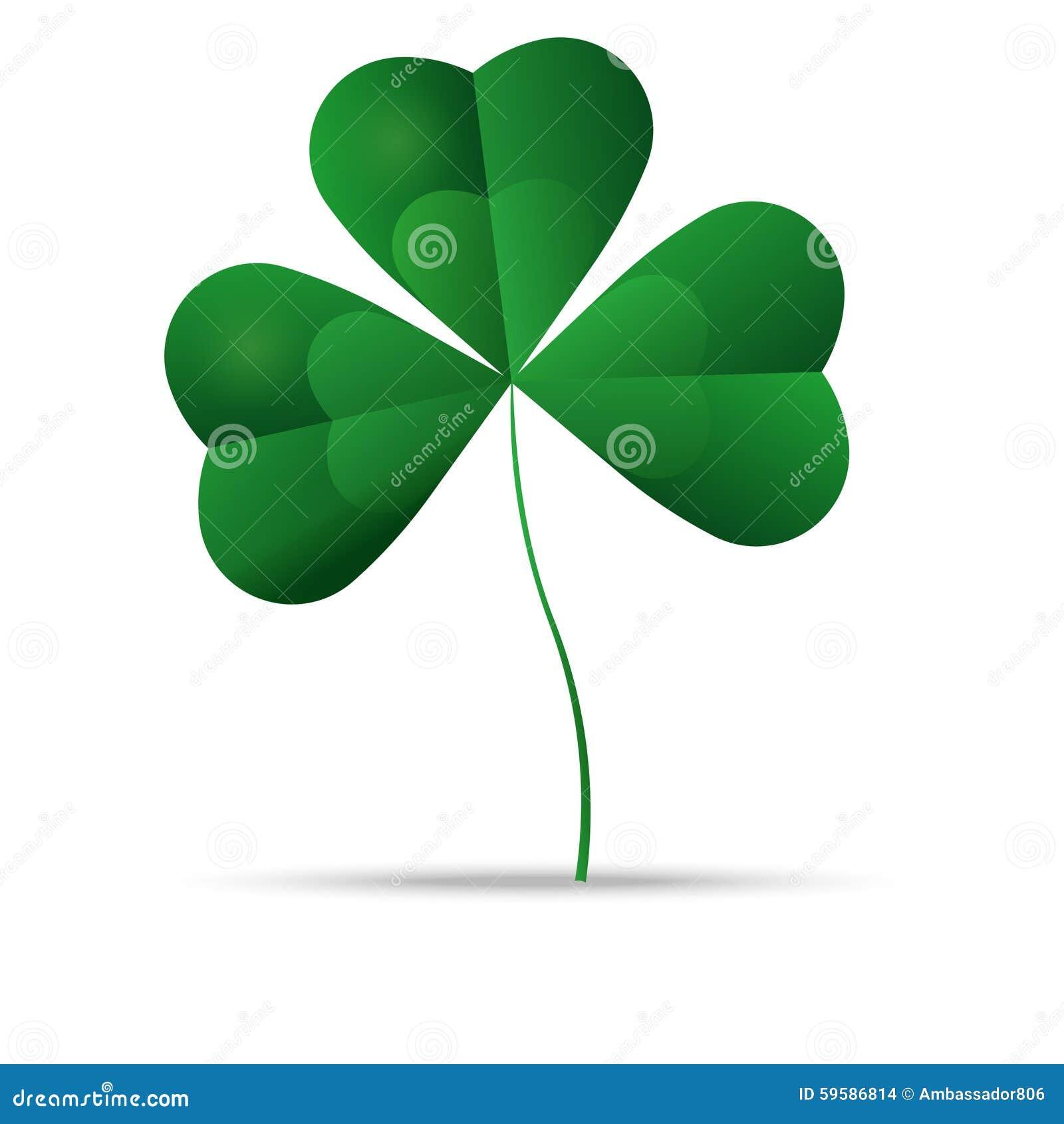 Oxalide petite oseille vert, trèfle de trois feuilles, vecteur