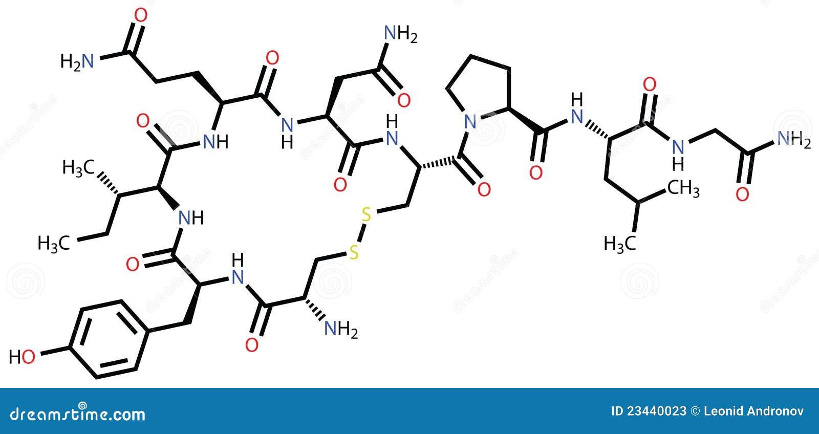 Oxytocin Molecule Oxytocin love hormone Stock