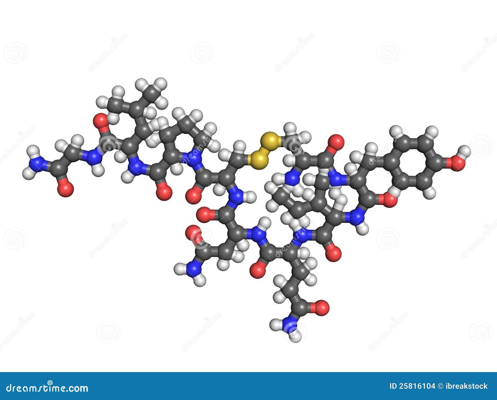 Oxytocin Molecule Oxytocin molecule on white