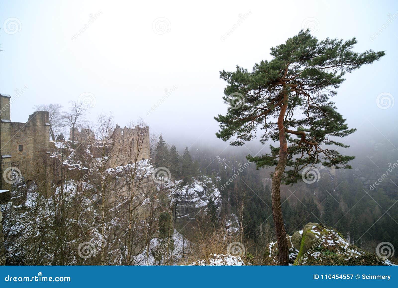 Oybin slottTyskland