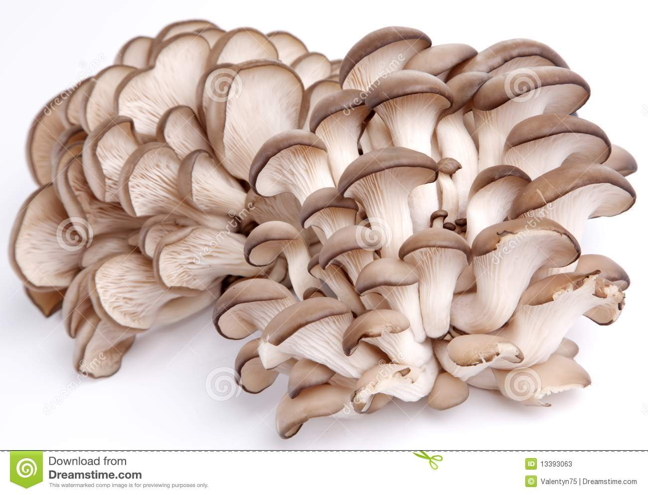 how to sell mushrooms to restaurants