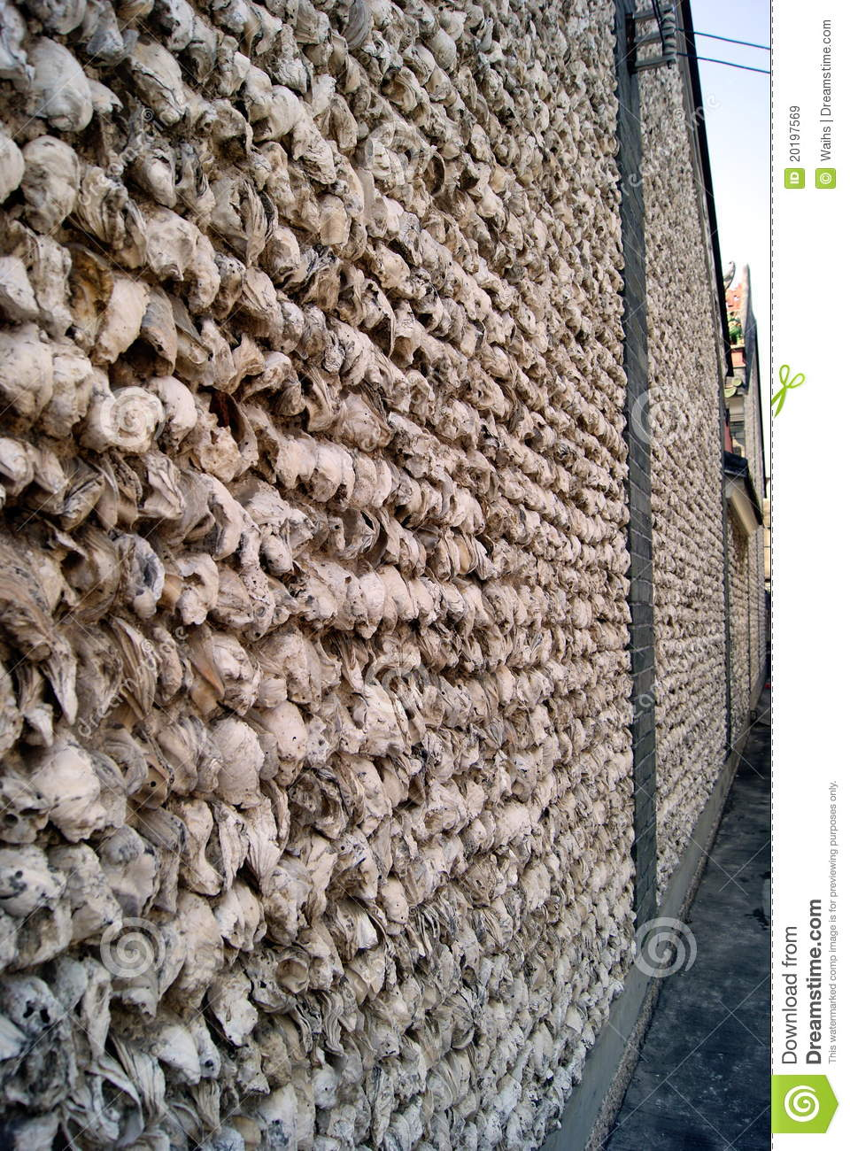 Oyster Shell Wall Stock Image Image Of Texture Remote 20197569
