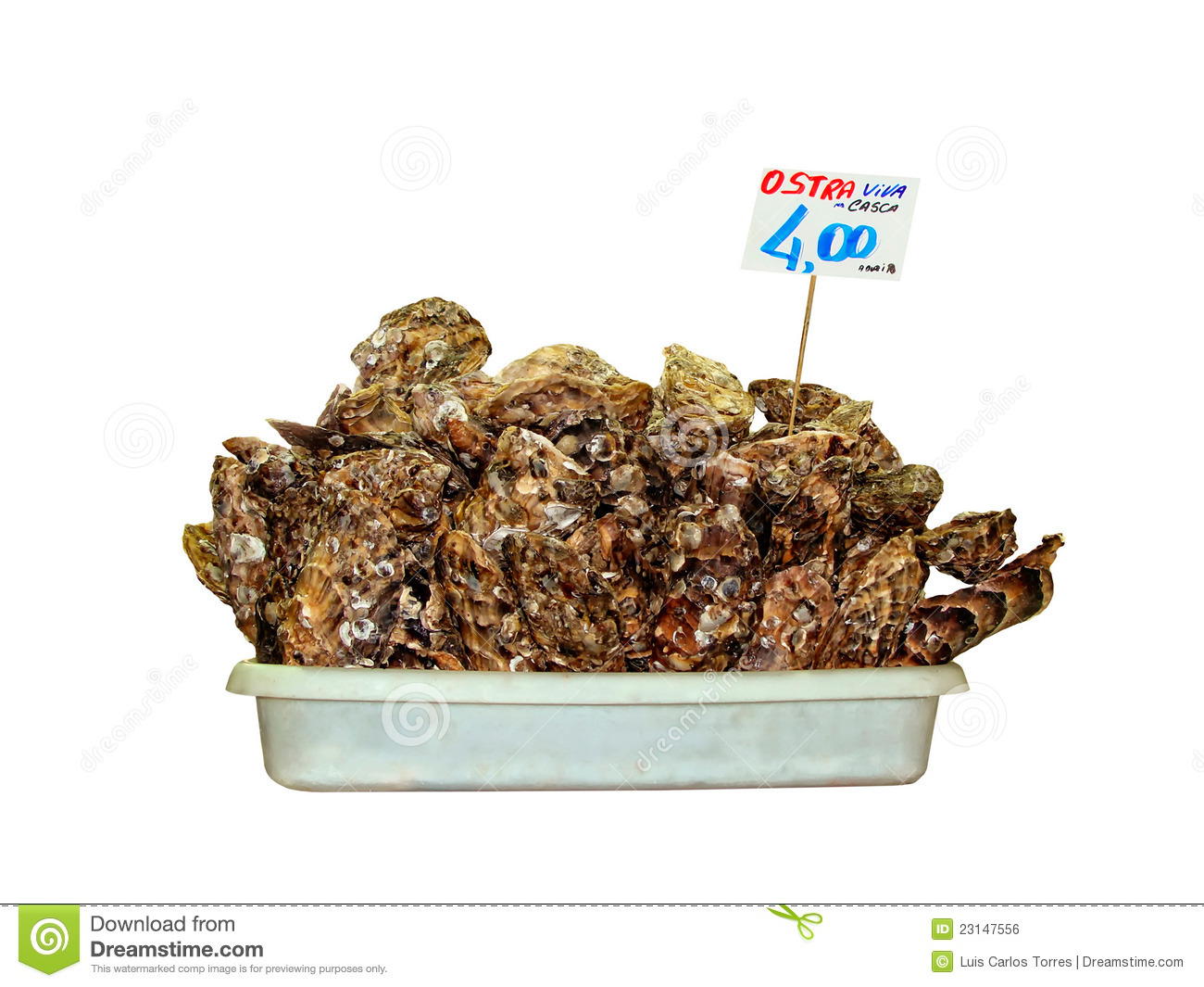 Oyster shells for selling