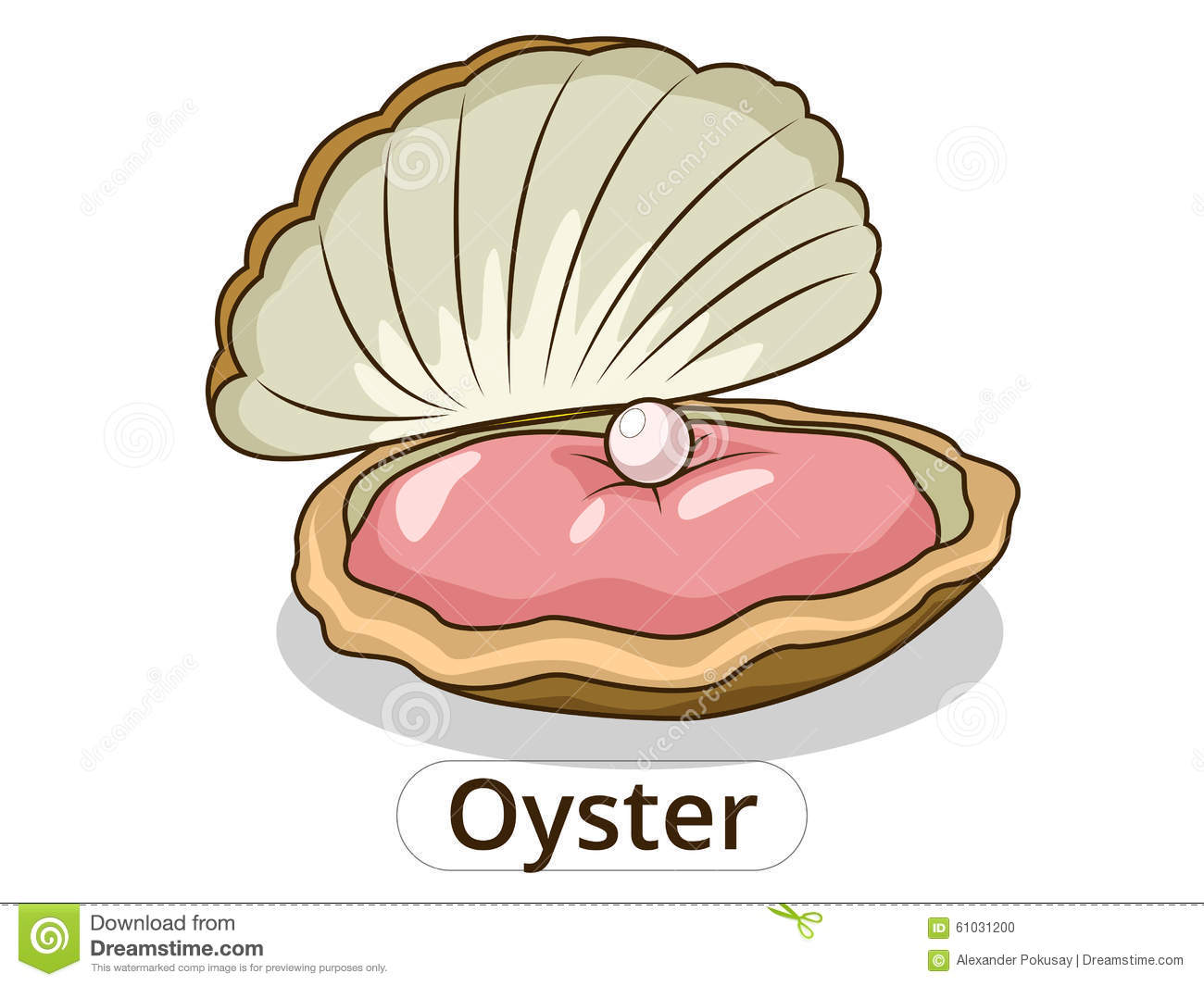 Oyster Underwater Animal Cartoon Illustration Stock Vector - Image ... Open Oyster Shell With Pearl