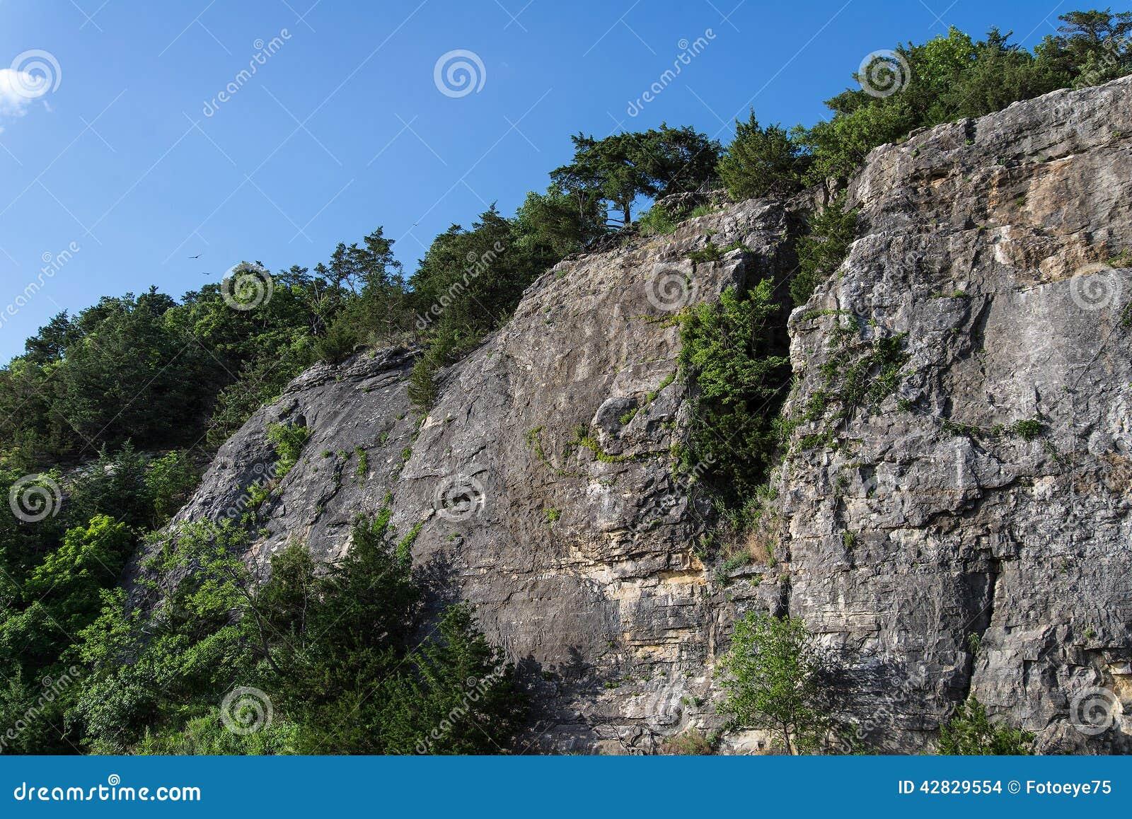 Ozark Cliffs e paisagem das árvores