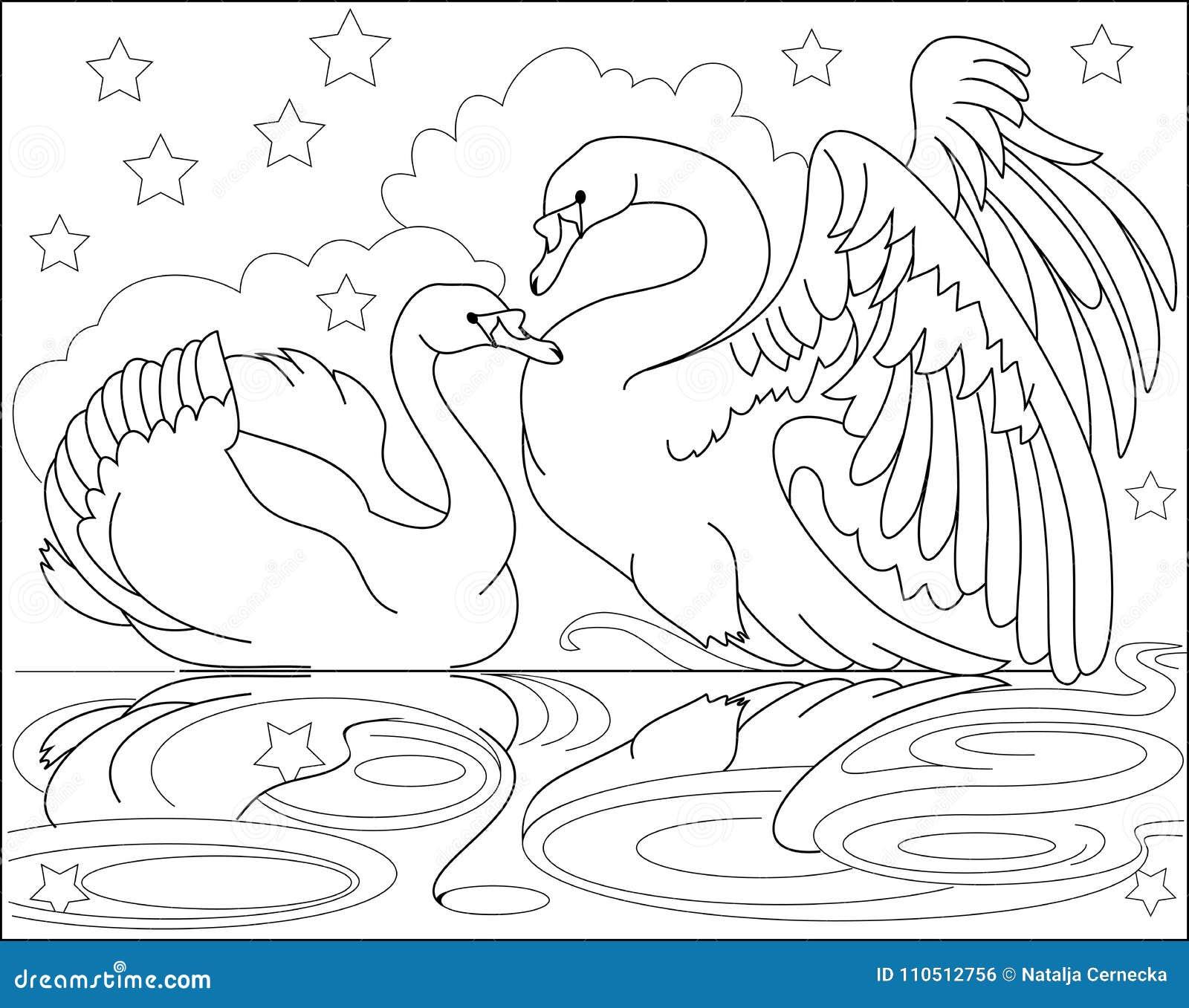 Página Blanco Y Negro Para Colorear Dibujo De Los Cisnes Hermosos De