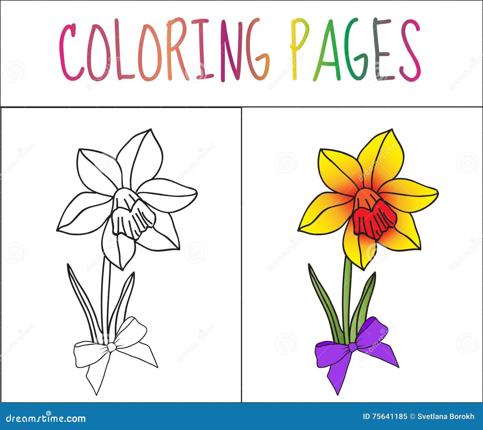 Página Del Libro De Colorear, Flor, Iris Versión Del Bosquejo Y Del ...
