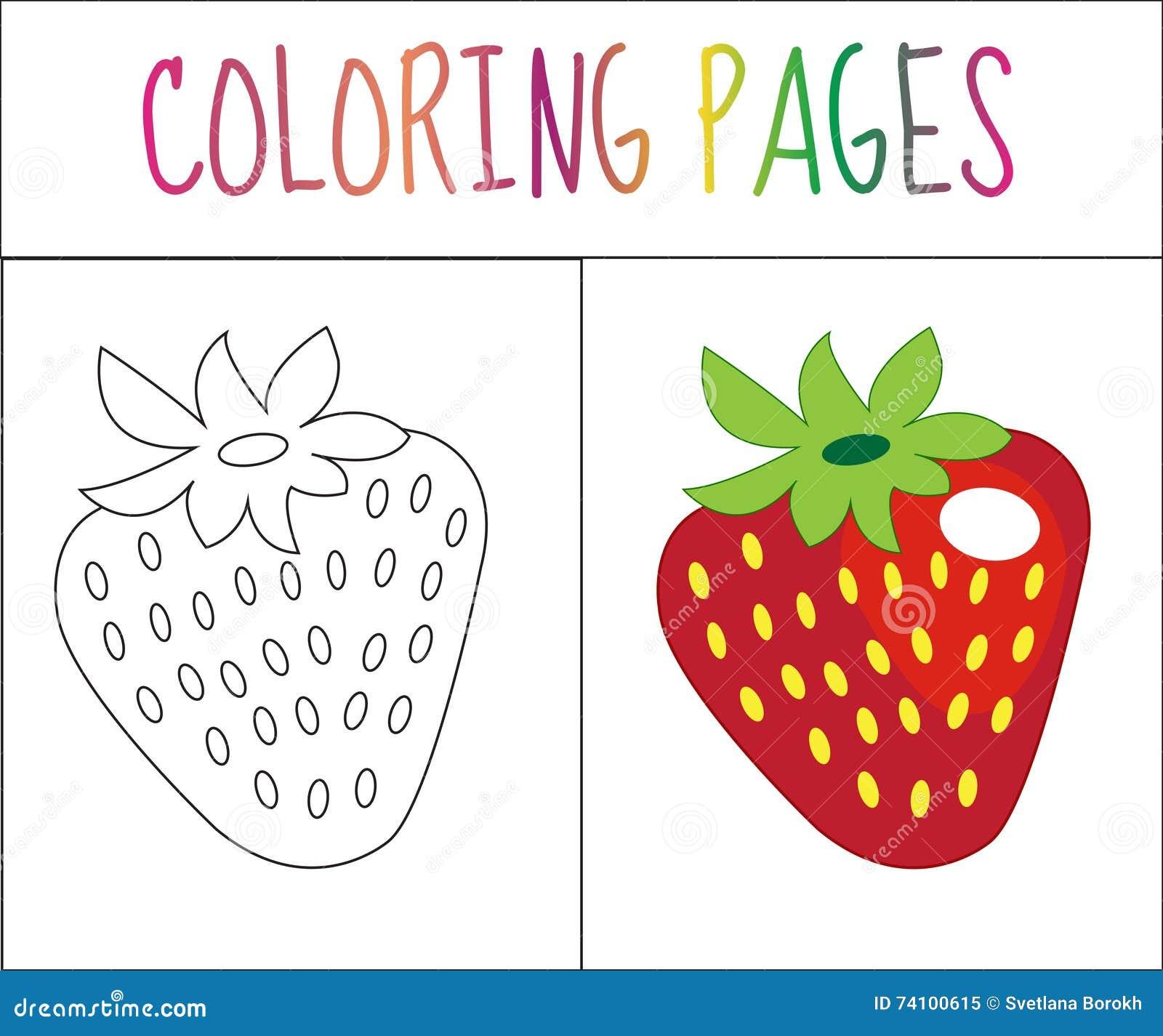 Página Del Libro De Colorear Fresa Versión Del Bosquejo Y Del Color ...
