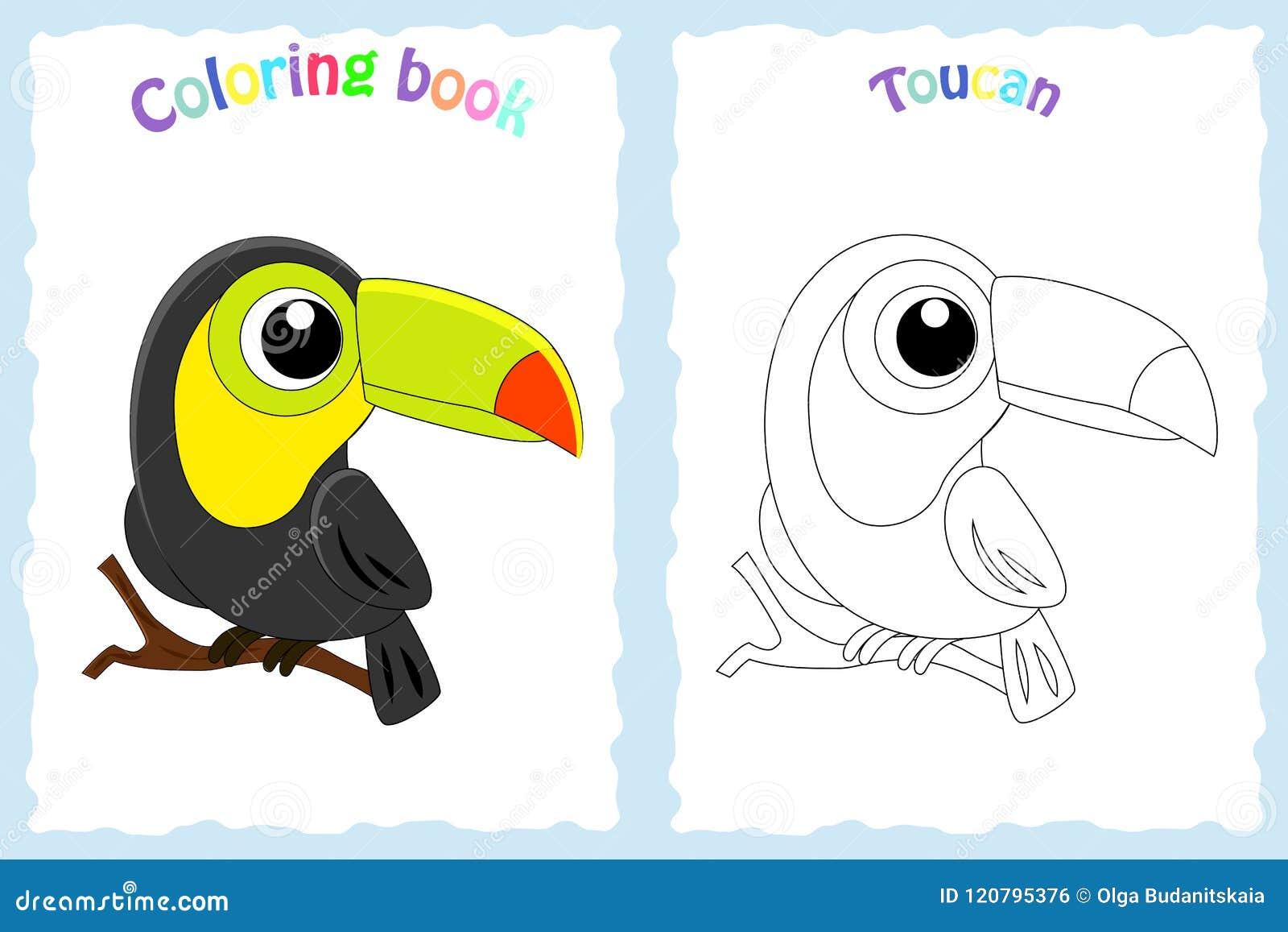 Página Del Libro De Colorear Para Los Niños Con El Tucán Y