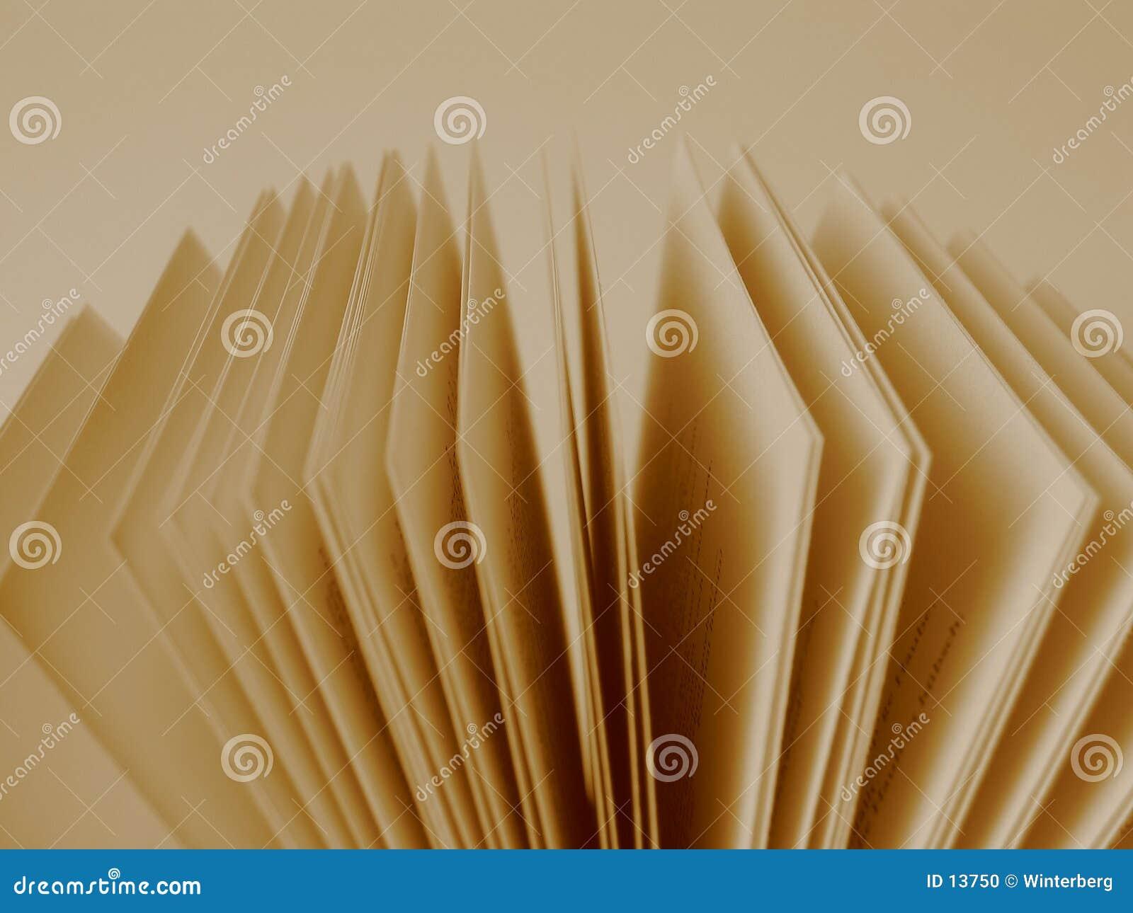 Páginas de um livro aberto