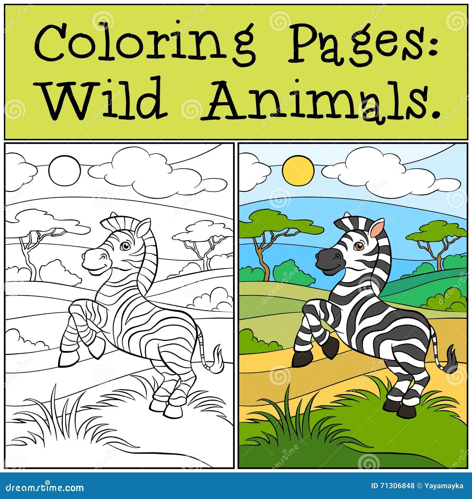 Perfecto Páginas De Color Cebra Embellecimiento - Dibujos Para ...