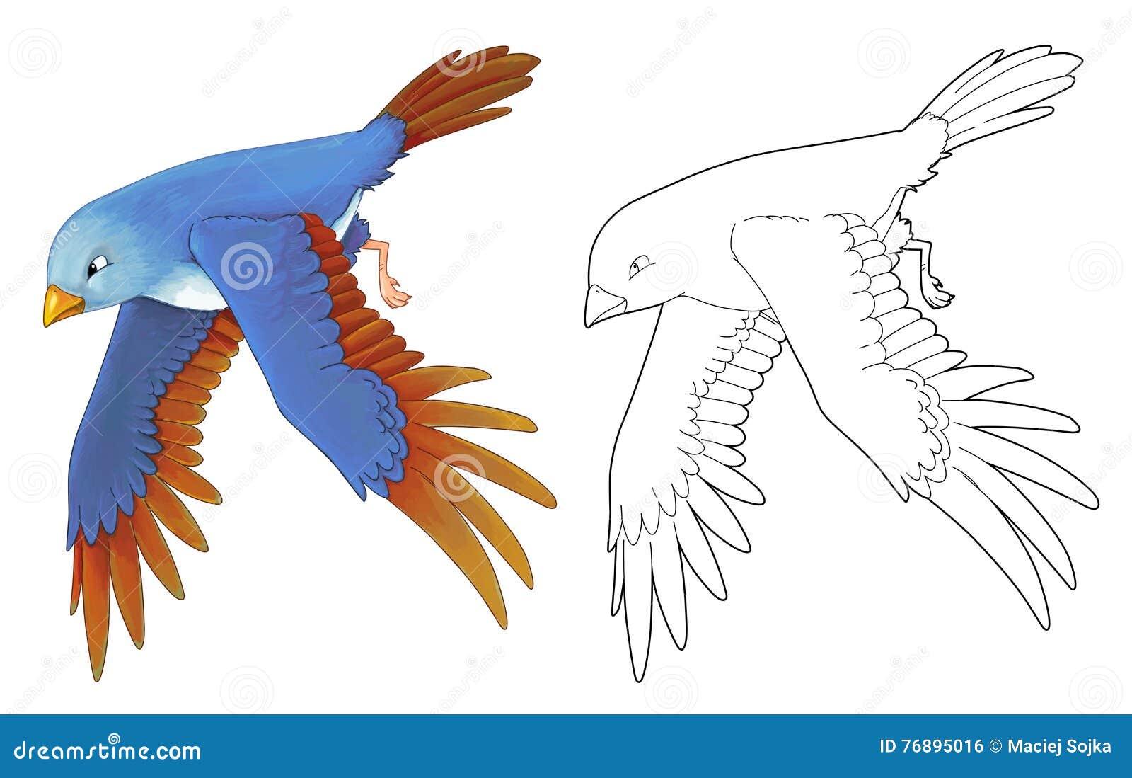 Pájaro colorido exótico de la historieta - vuelo - aislado - con la página del colorante