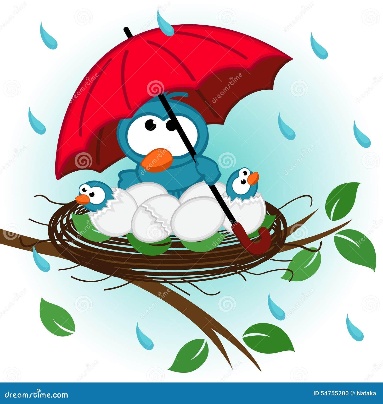 Pájaro debajo del paraguas en jerarquía