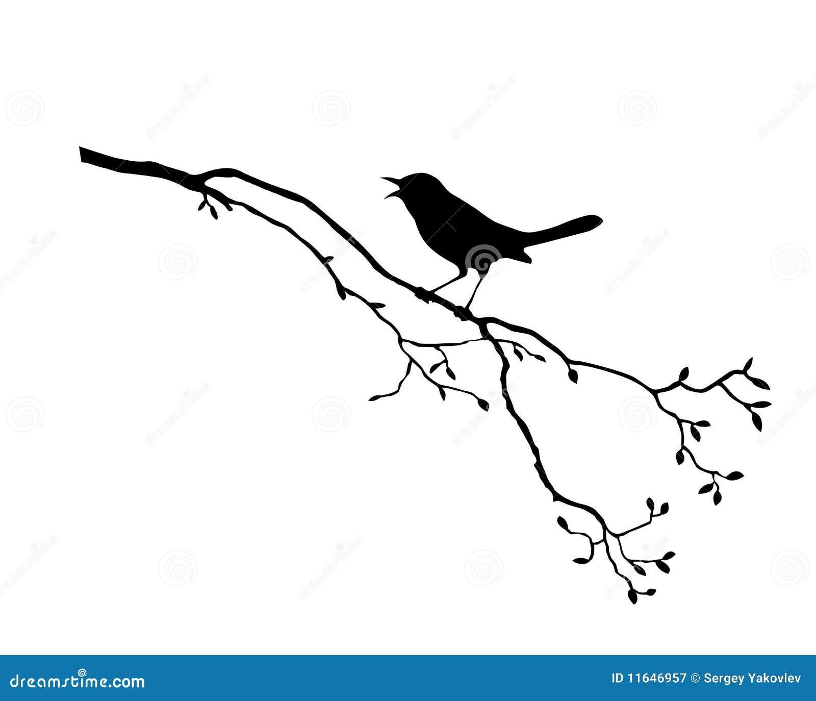 Pájaro en árbol de la ramificación