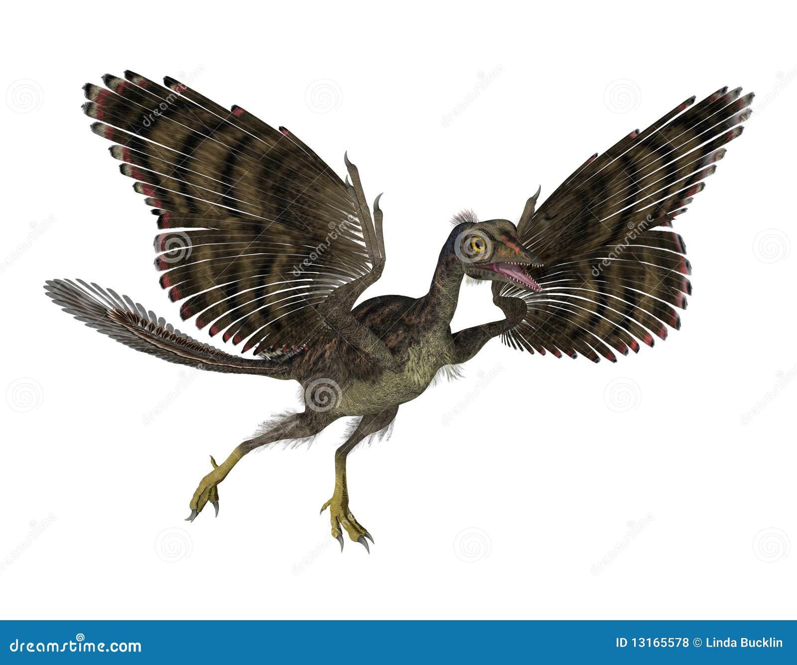 Pájaro prehistórico