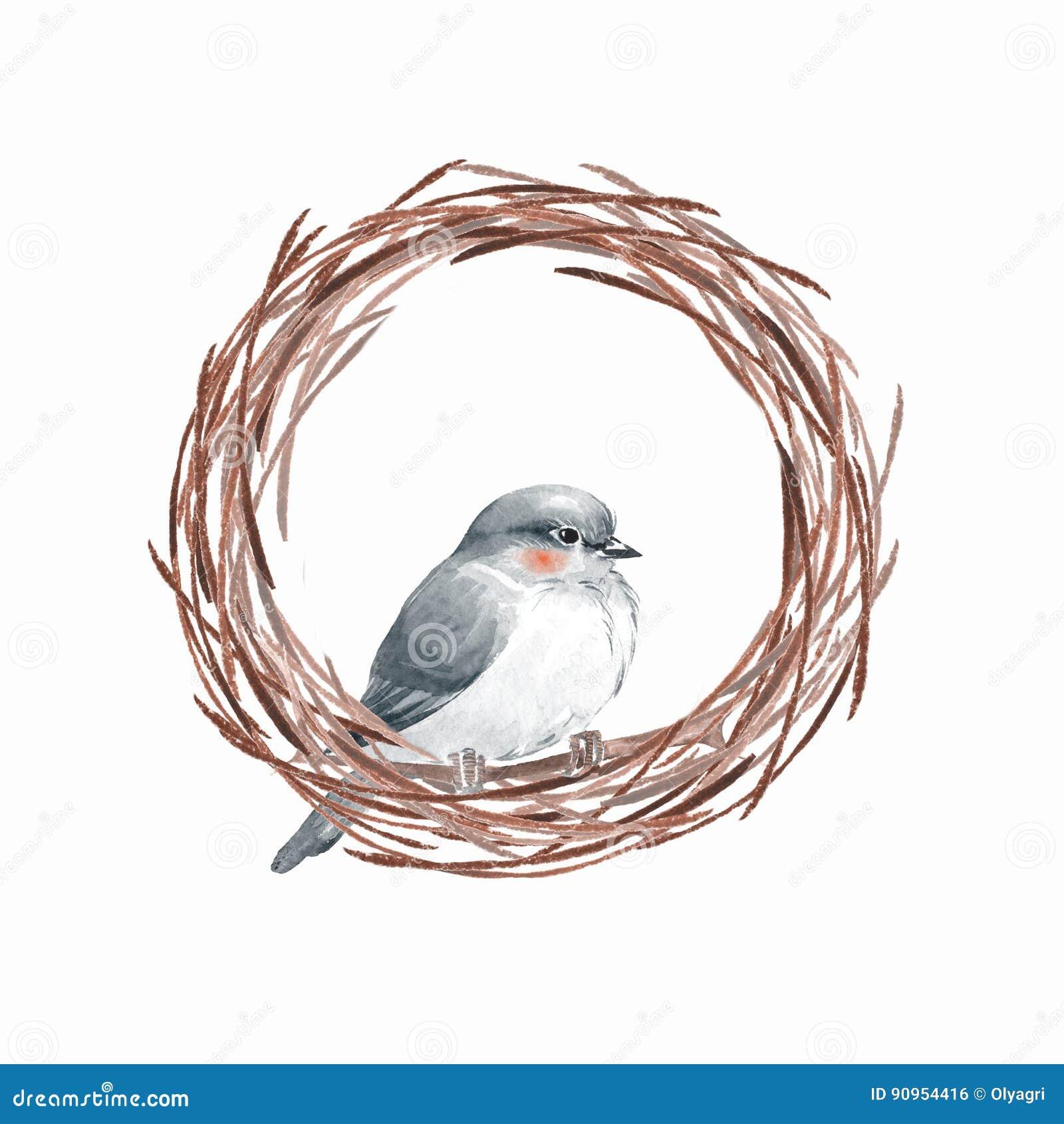 Pájaro y jerarquía