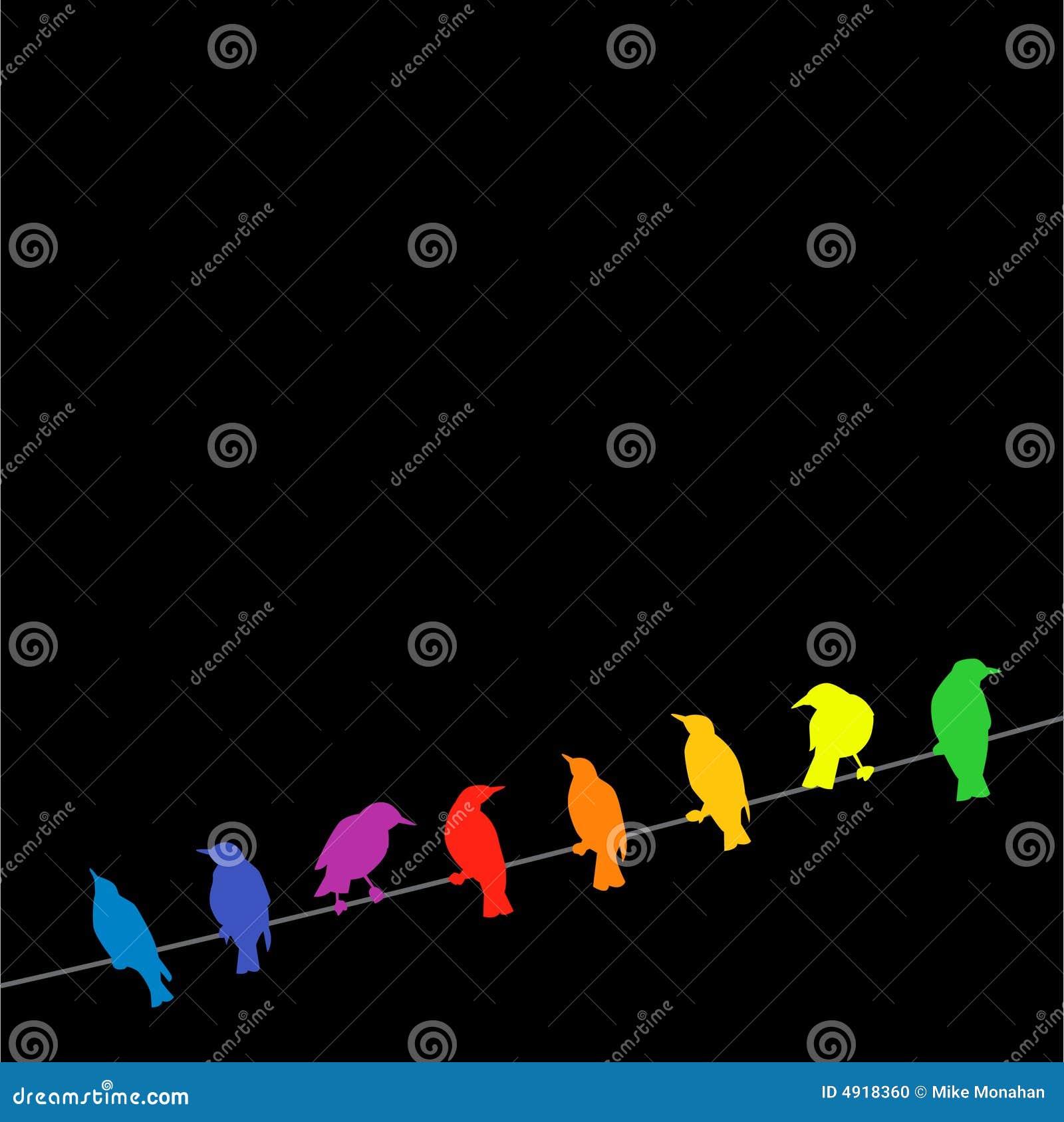 Pájaros del arco iris en un alambre