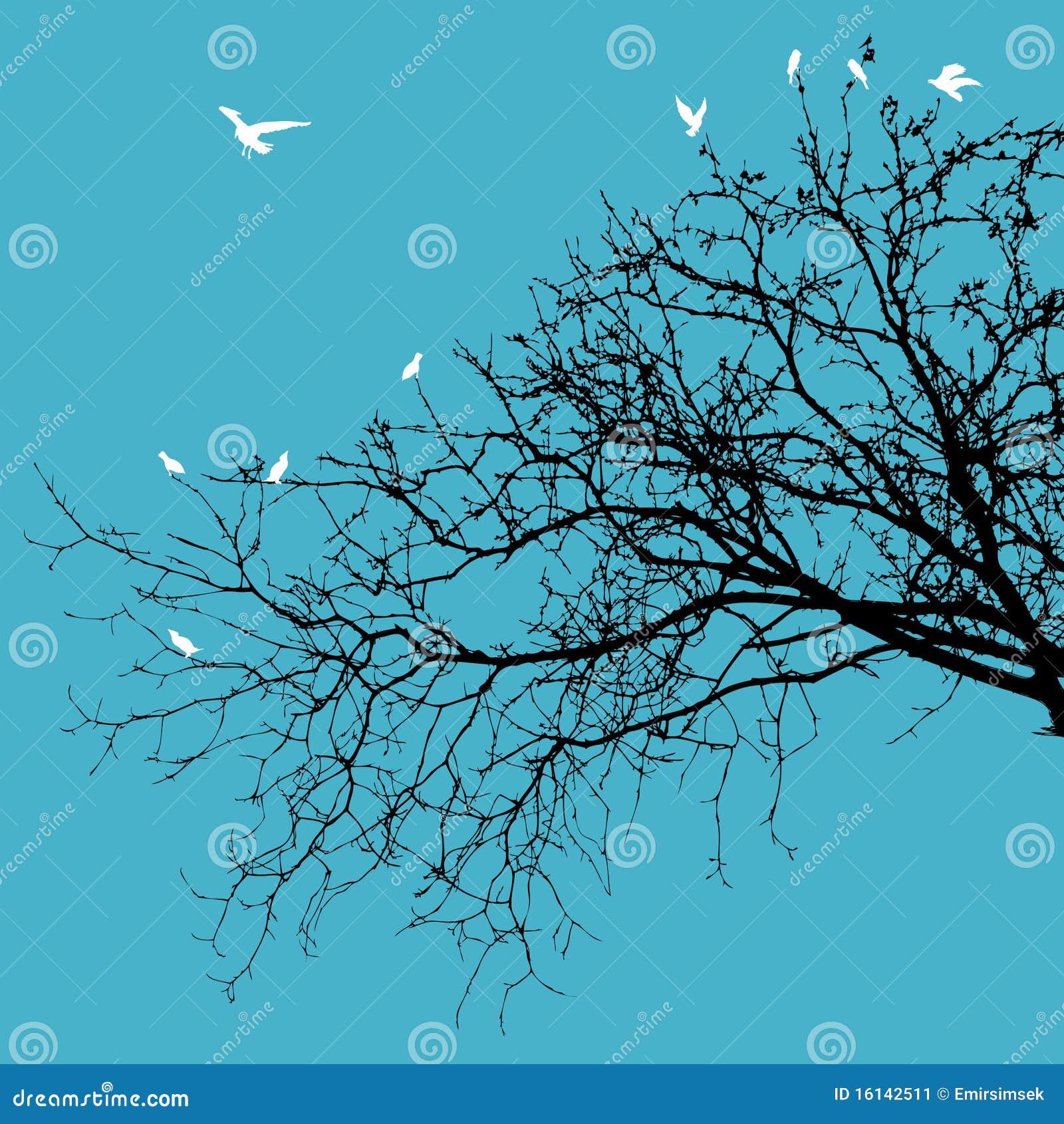 Pájaros en ramificaciones