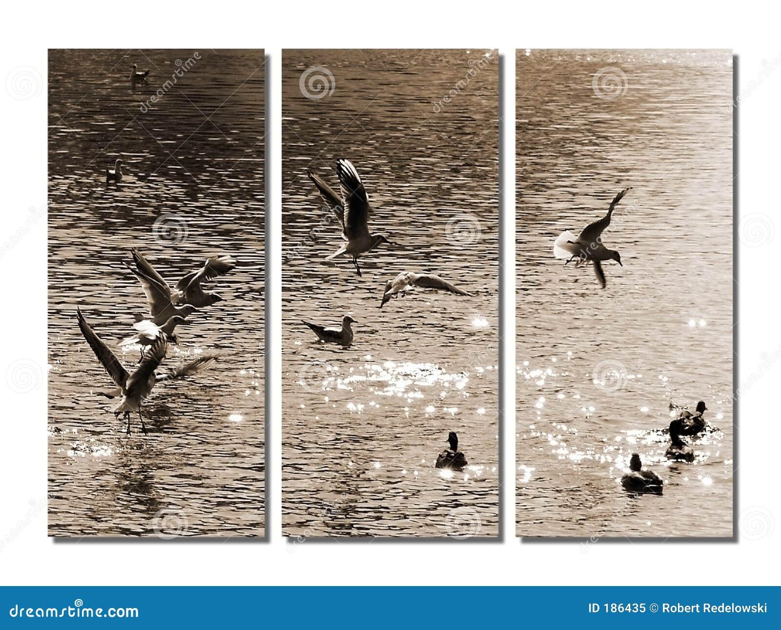 Pájaros en sepia