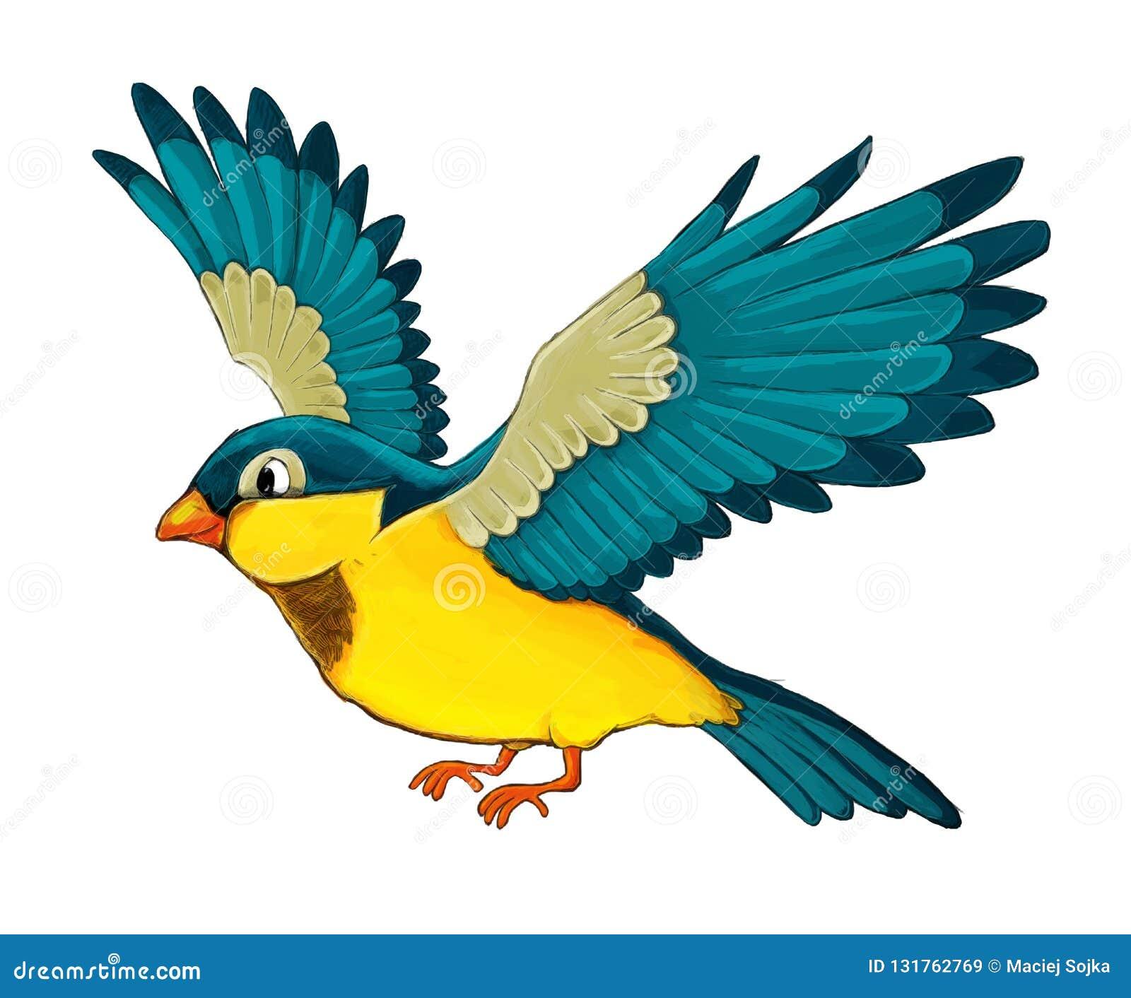 Pássaro Colorido Exótico Dos Desenhos Animados - Voando No Fundo ...