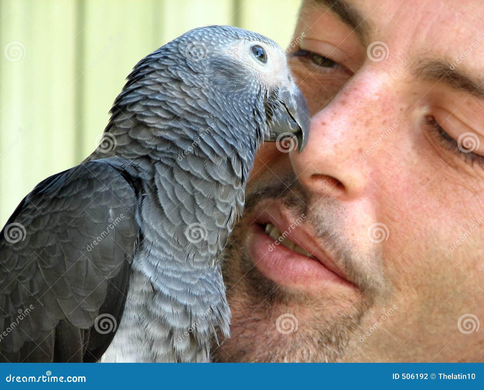 Pássaro e um homem