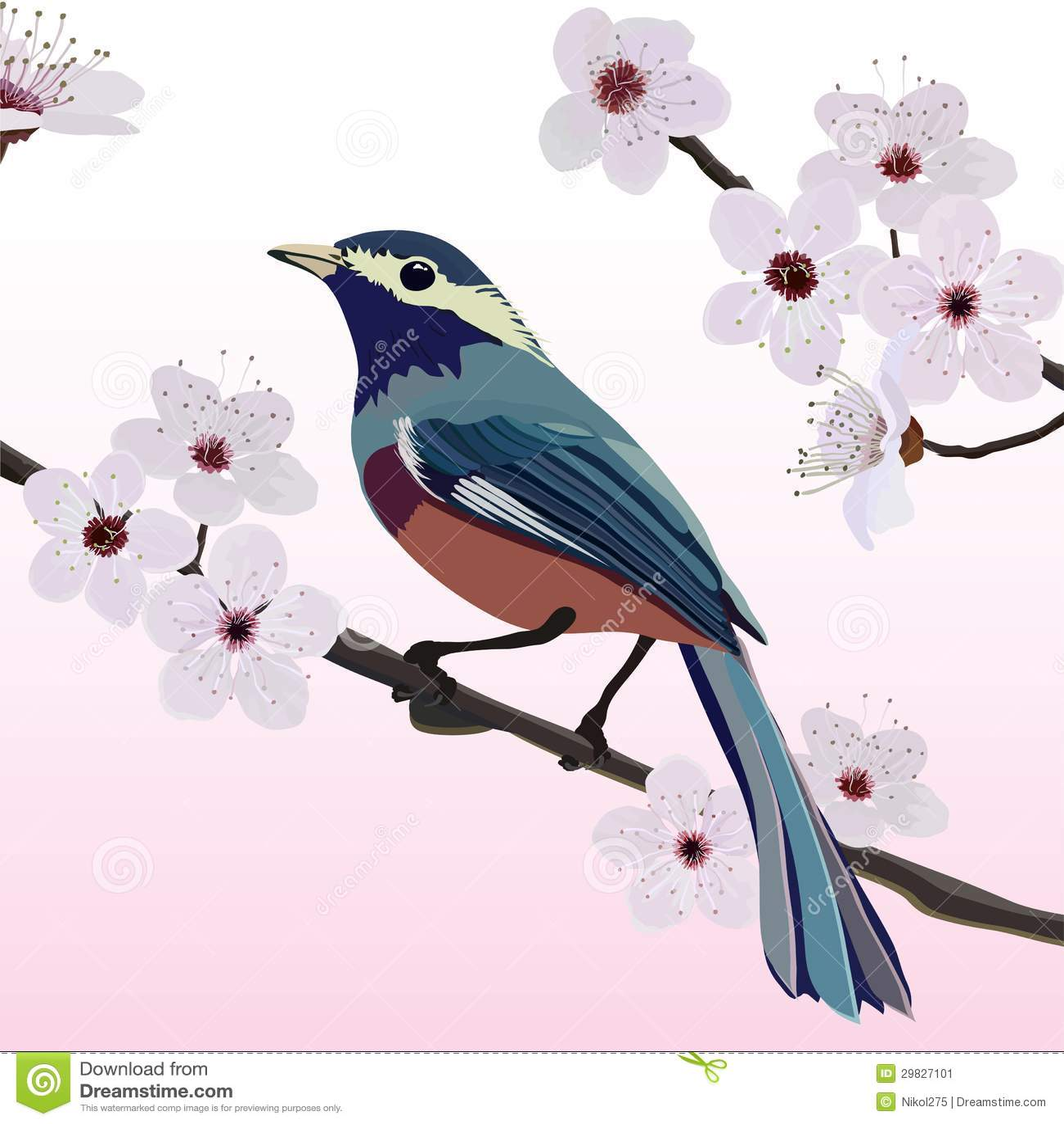 Projeto, pássaro e flor de cartão