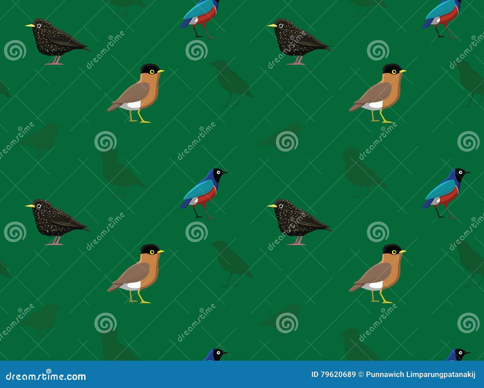 Pássaro Starling Wallpaper