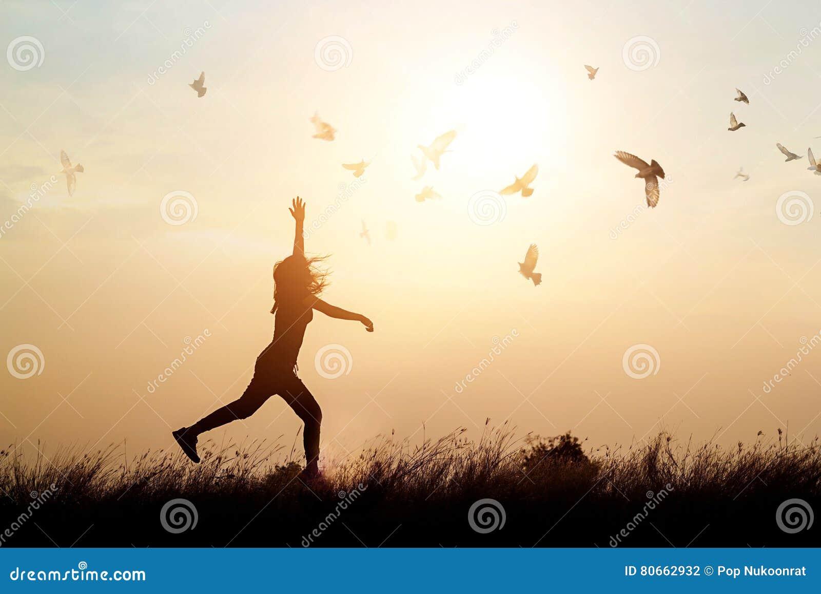 Pássaros da mulher e de voo que apreciam a vida na natureza no por do sol