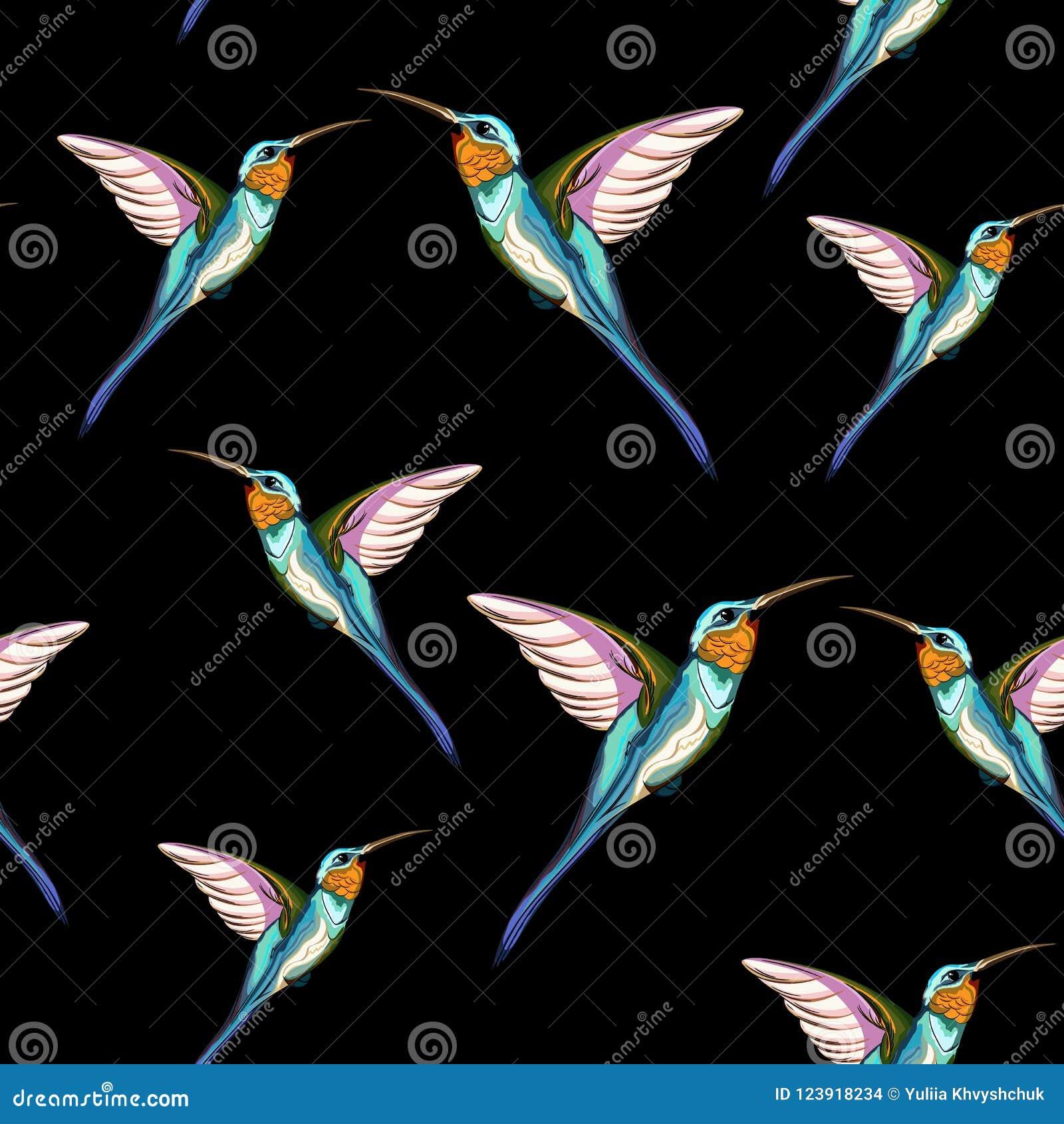 Pássaros do zumbido Teste padrão sem emenda do pássaro tropical exótico do zumbido Ilustração desenhada mão