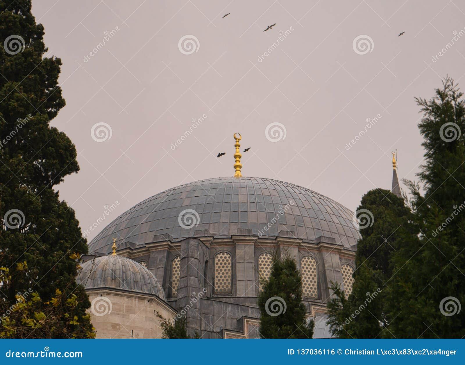 Pássaros que circundam acima da abóbada de uma grande mesquita