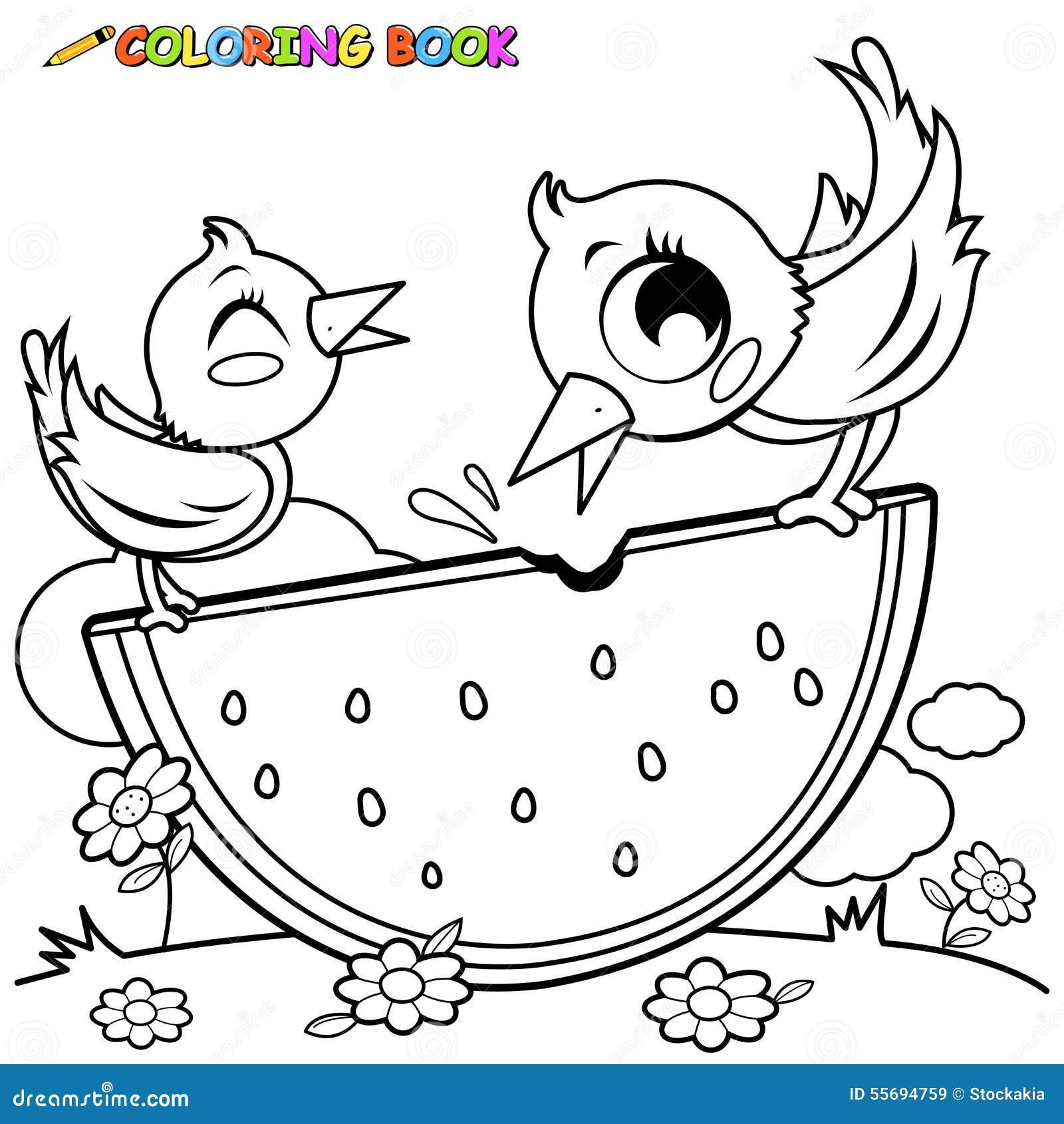 pássaros que comem a página do livro para colorir da melancia
