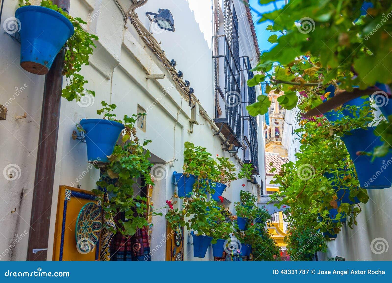 Pátio andaluz típico decorado com as flores na cidade de Córdova, Espanha