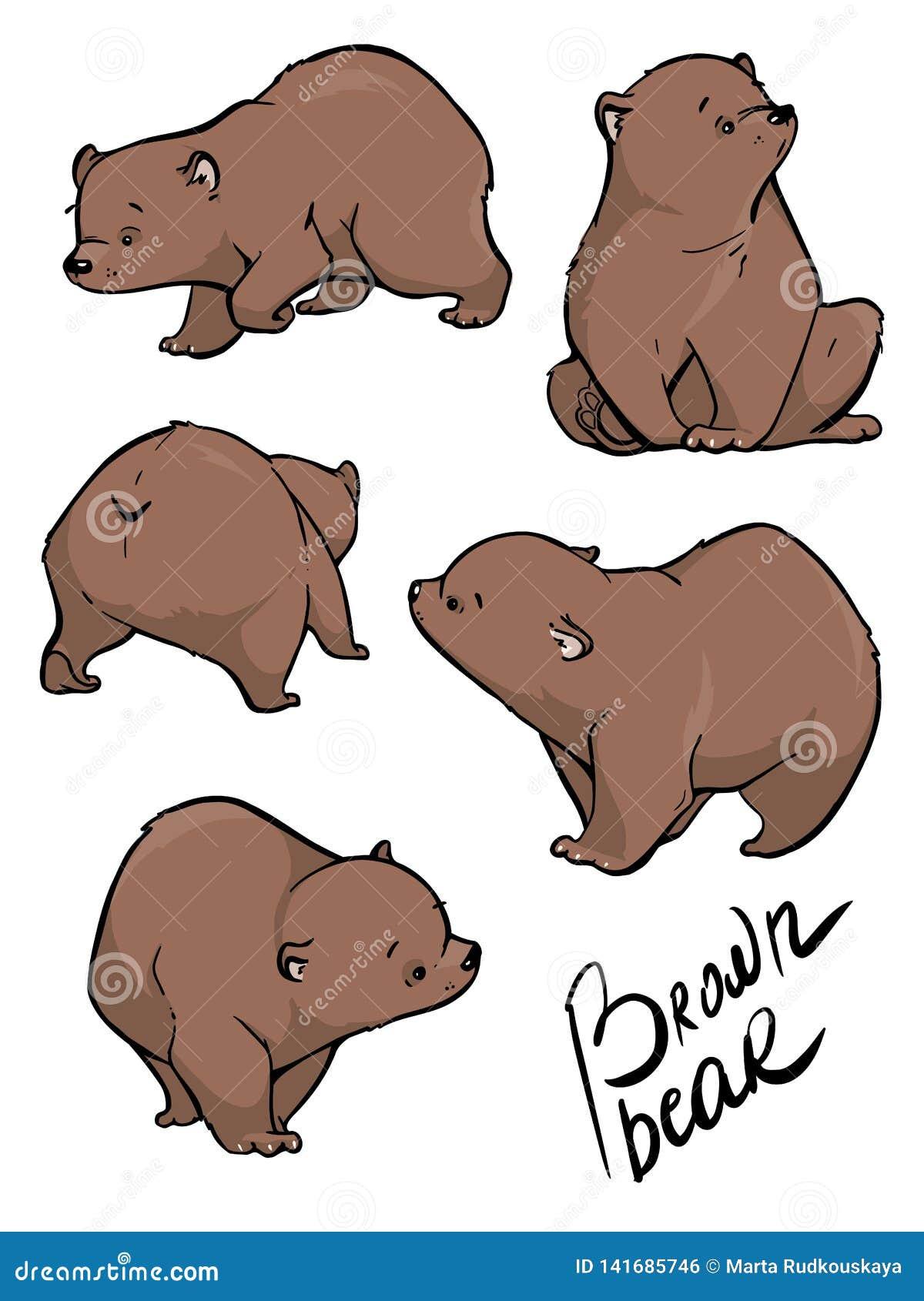 Płaski wektorowy ustawiający ampuła niedźwiedź w różnych pozach Dzika lasowa istota z brown futerkiem