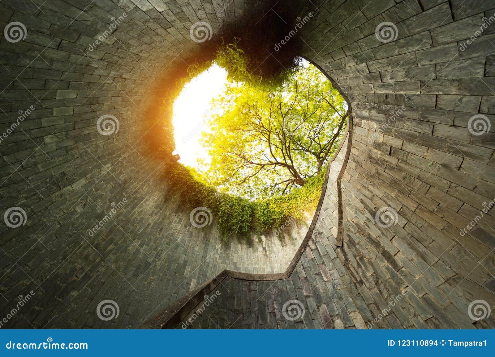 På burk för fort parkerar med inget Naturtunnel med träd