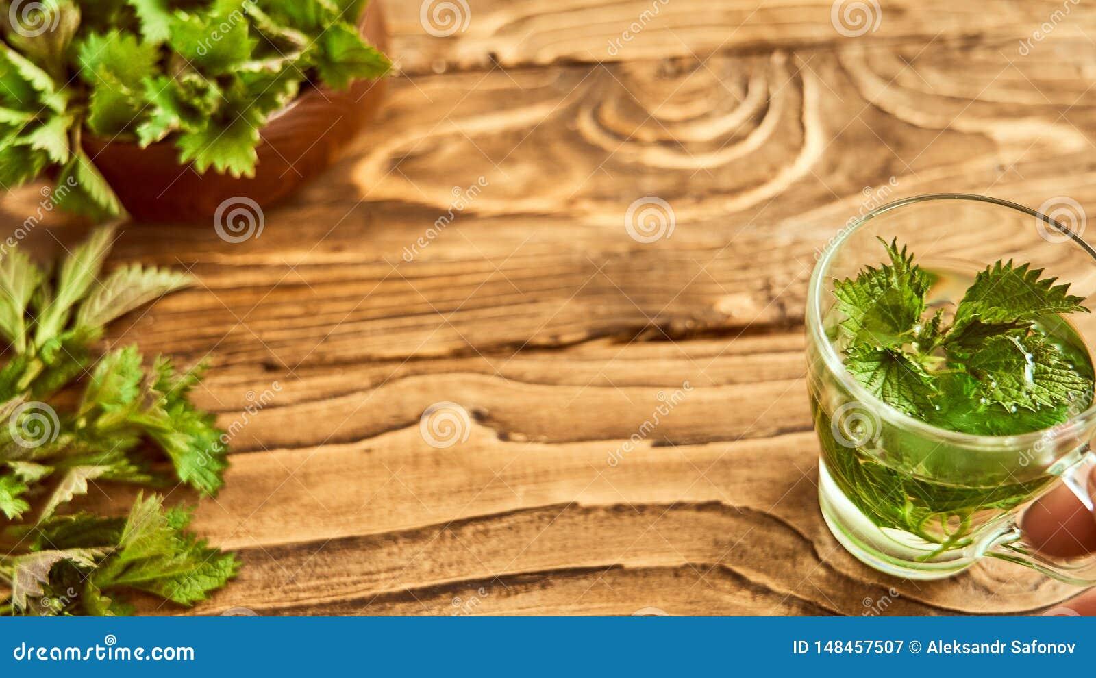 På en träbakgrund är ett exponeringsglas med bryggade unga nässlor medicinsk buljong av nässlan