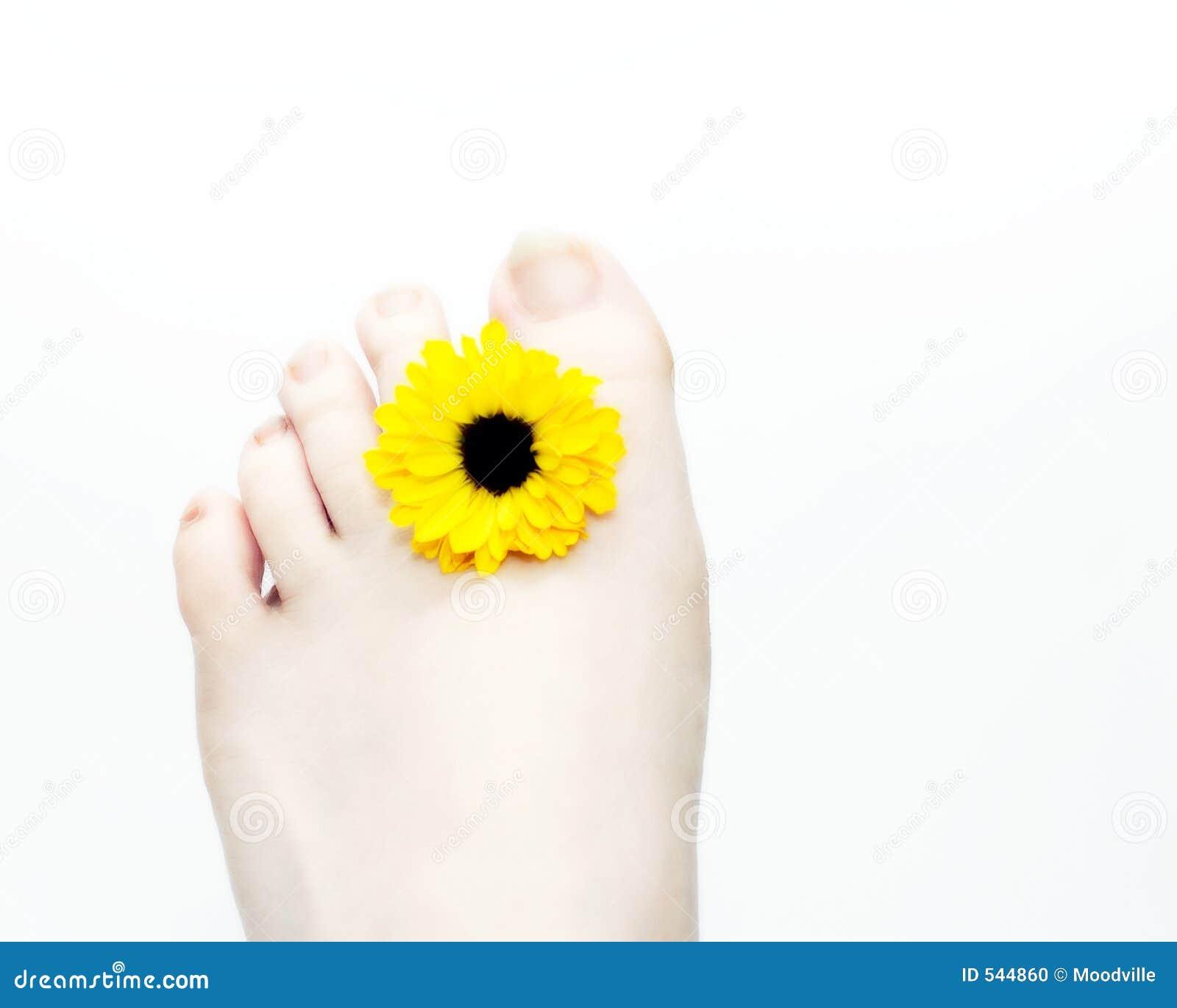 Pé e flor