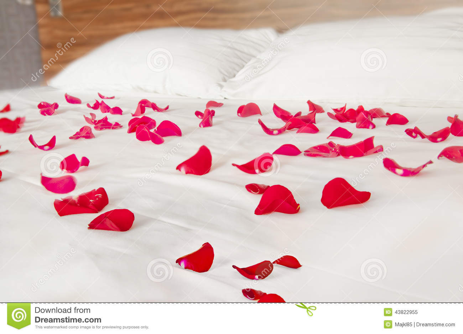 Pétalas De Rosa No Fundamento Branco Cenário Romântico  ~ Quarto Romantico Com Petalas