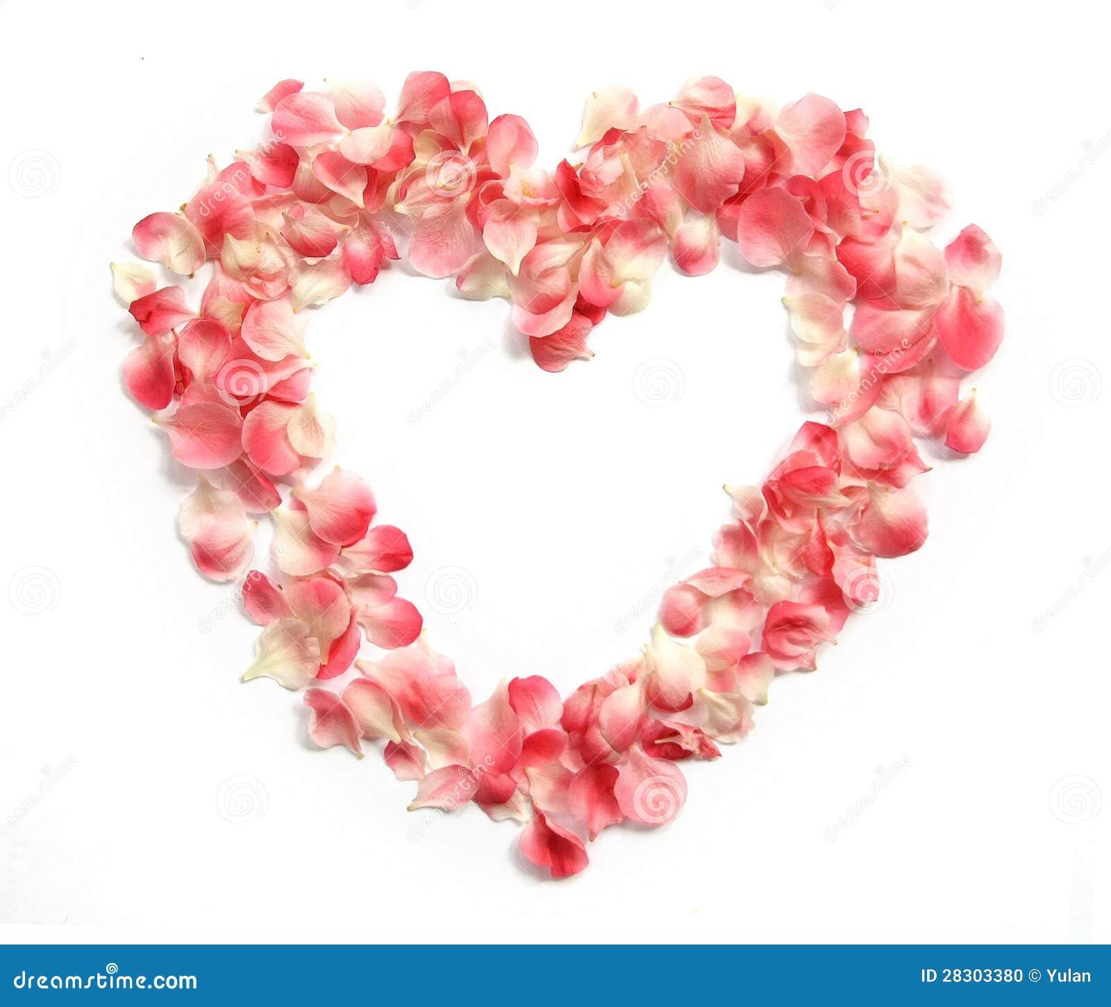 Petales De Fleur Dans Une Forme De Coeur Photo Stock Image Du