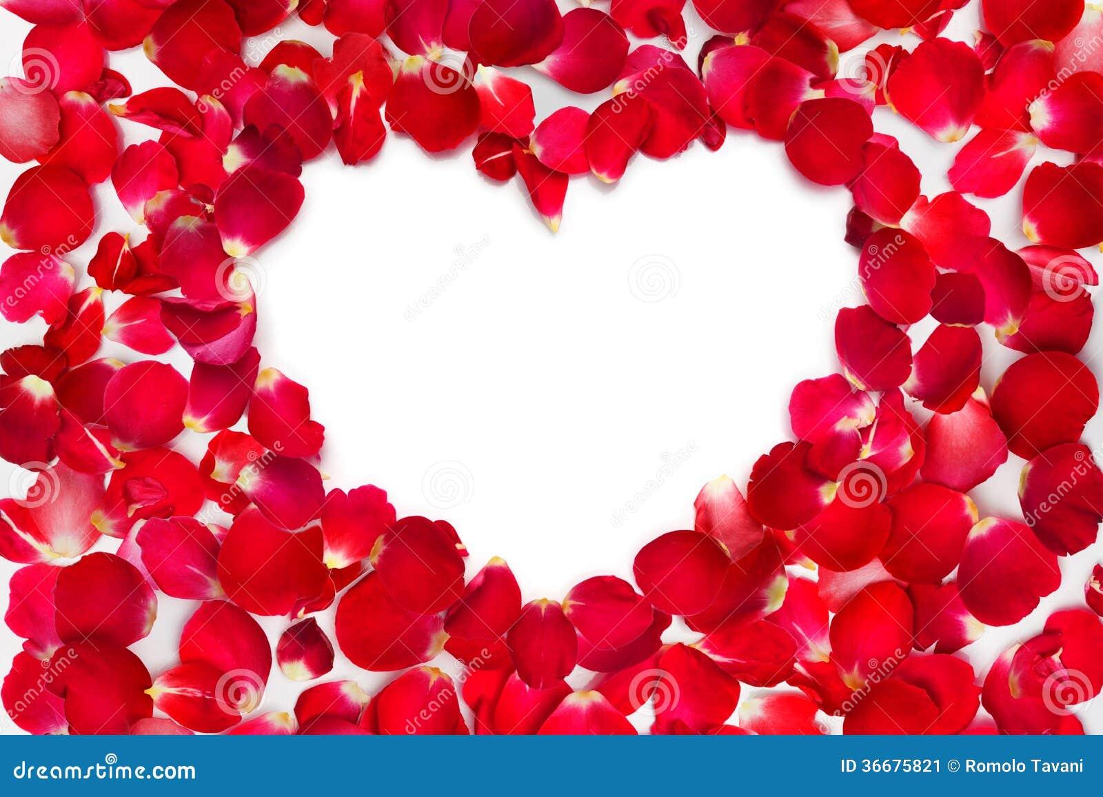 p tales de rose de coeur cadre image stock image 36675821. Black Bedroom Furniture Sets. Home Design Ideas