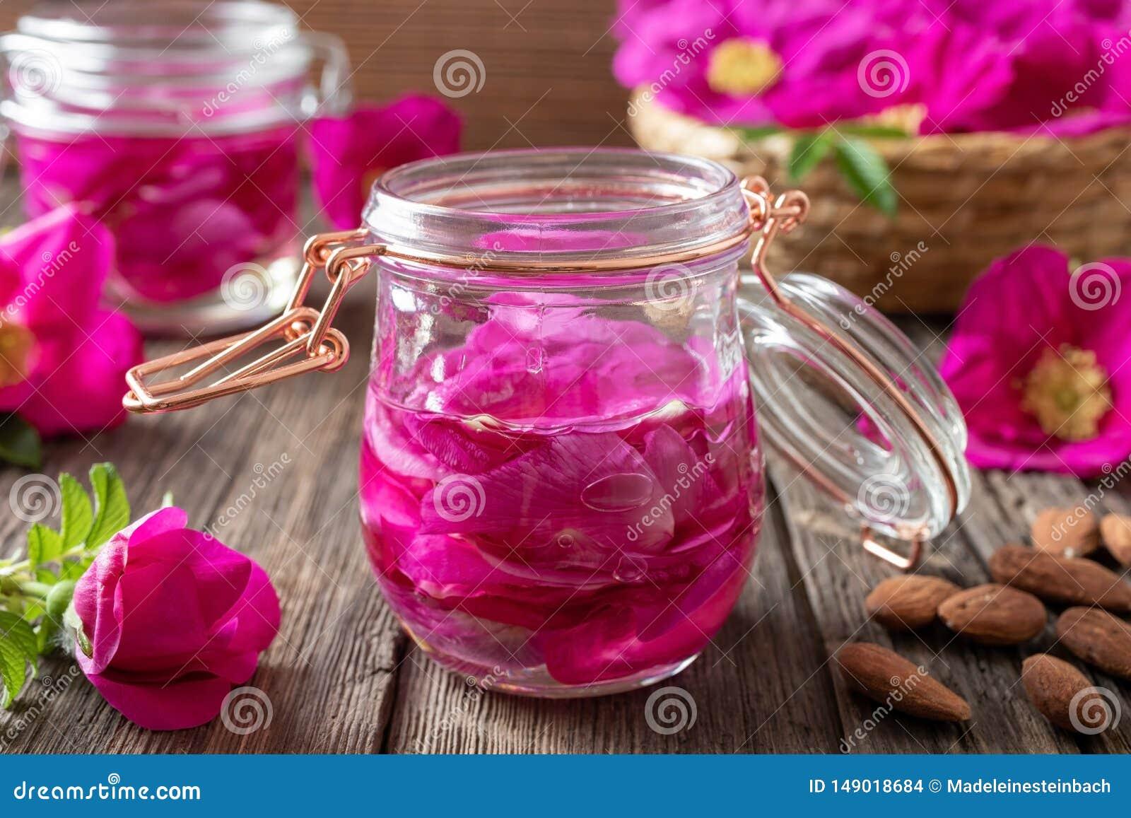 Pétales de rose de Rugosa macérant en huile d amandes