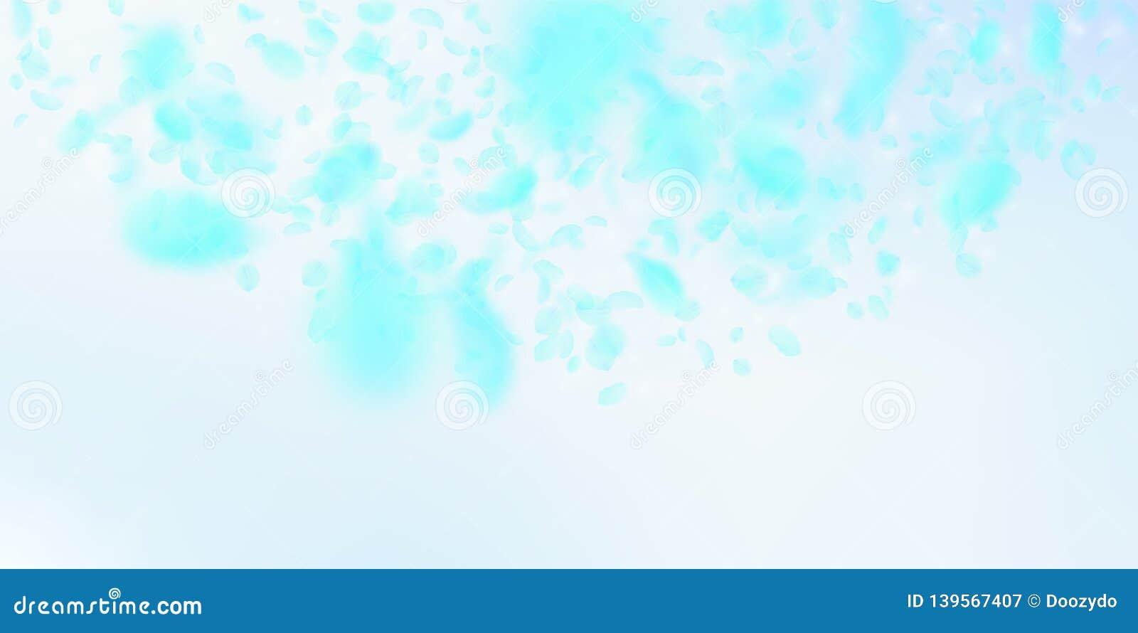 Pétalos de la flor de la turquesa que caen abajo Ro enérgico