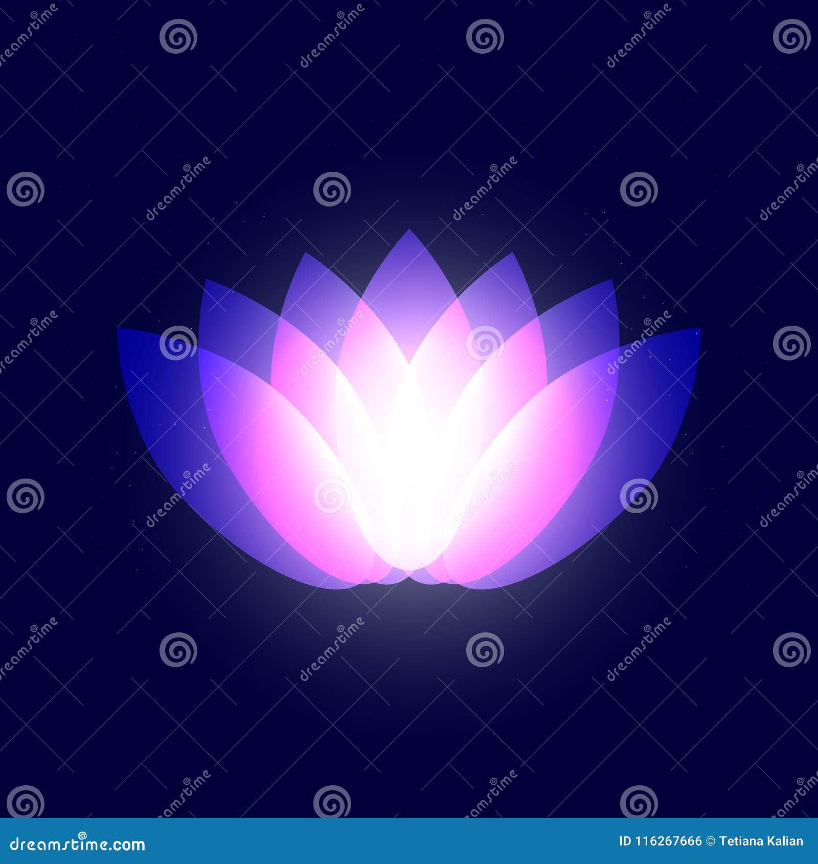 Pétalos Púrpuras De Neón Gráficos Abstractos Del Loto De La