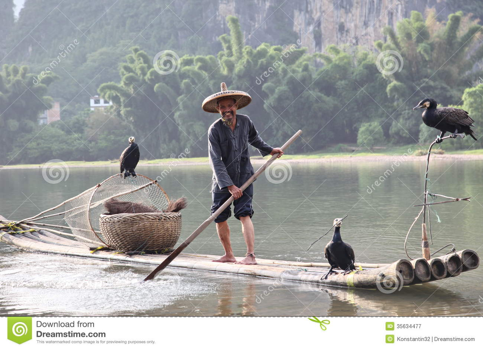 Pêche chinoise d homme avec des oiseaux de cormorans dedans