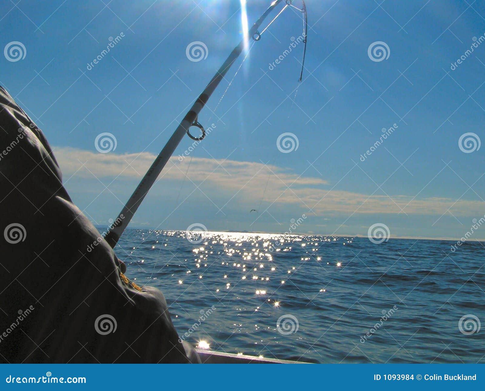 Pêche maritime profonde 2