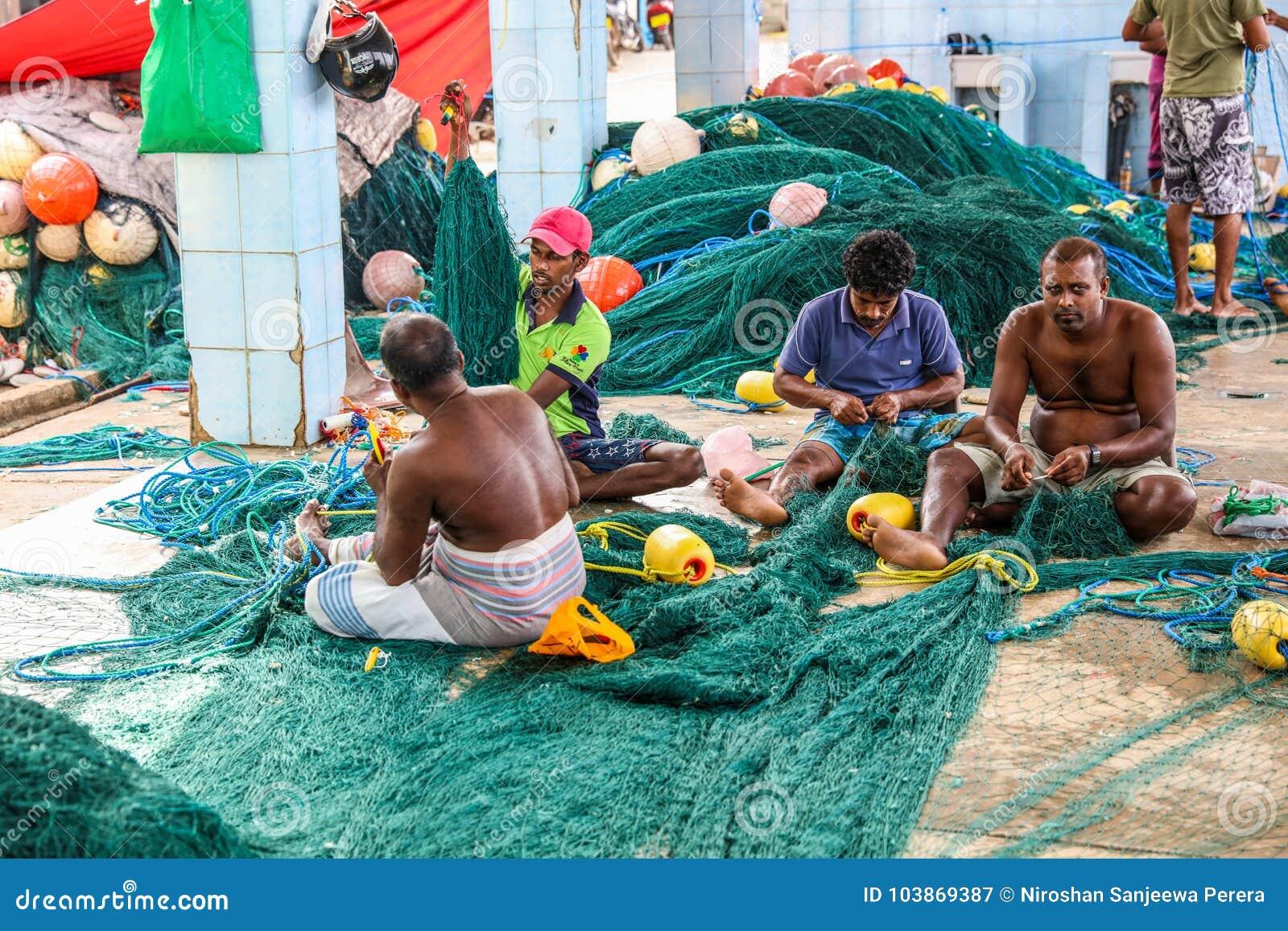 Pêcheur travaillant aux filets de pêche dans le port de Mirissa, Sri Lanka