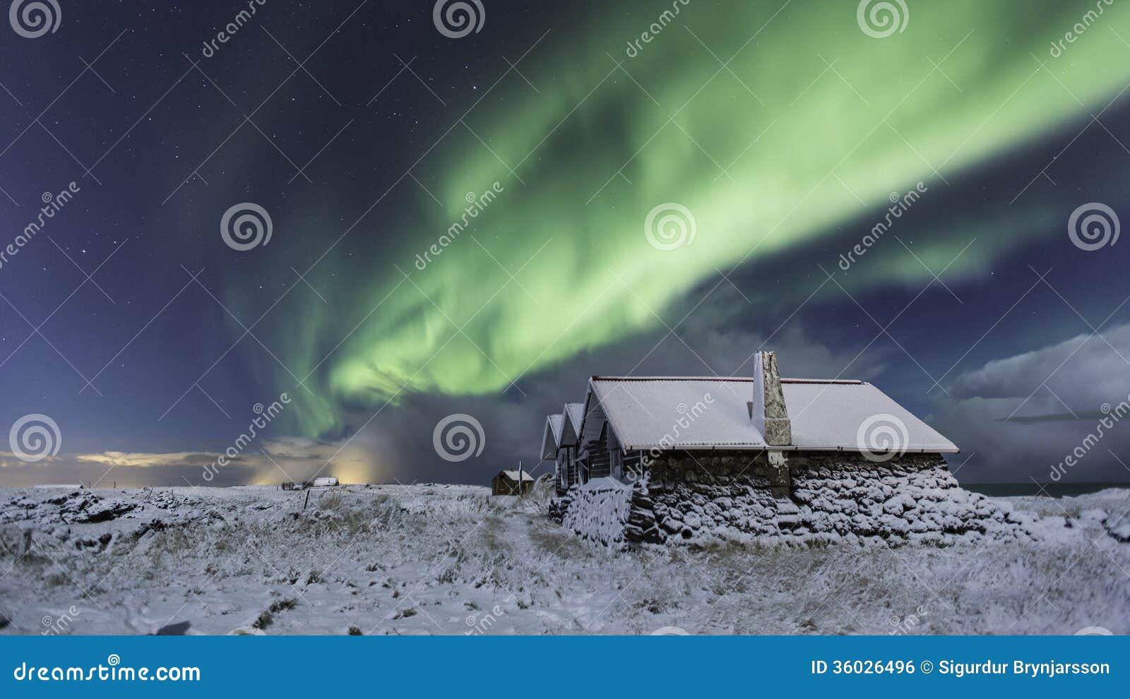 Północni światła w zimie